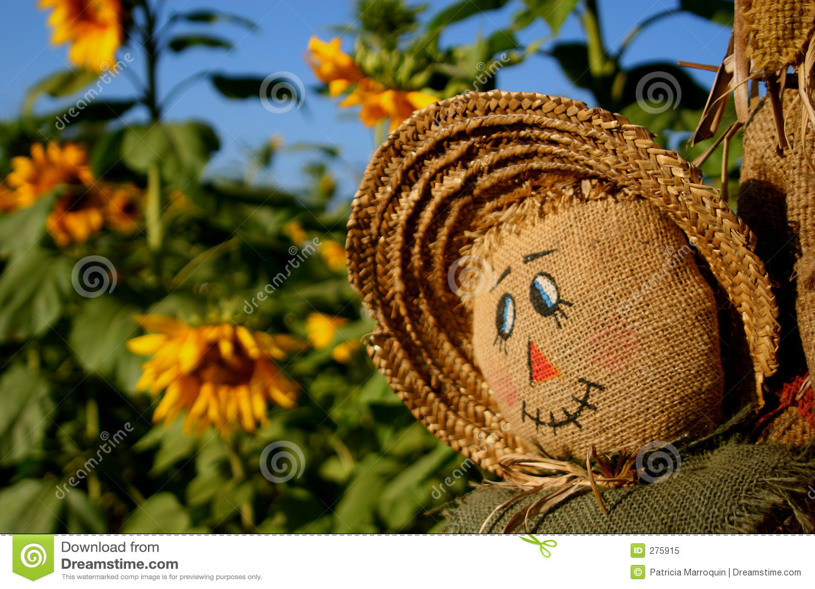 Le för scarecrow