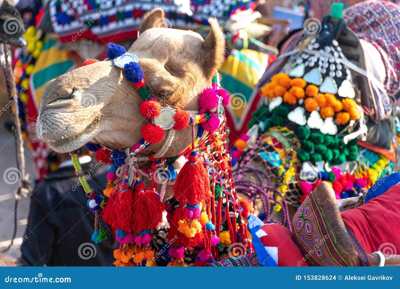 Le festival d été dans Jaisalmer en Inde