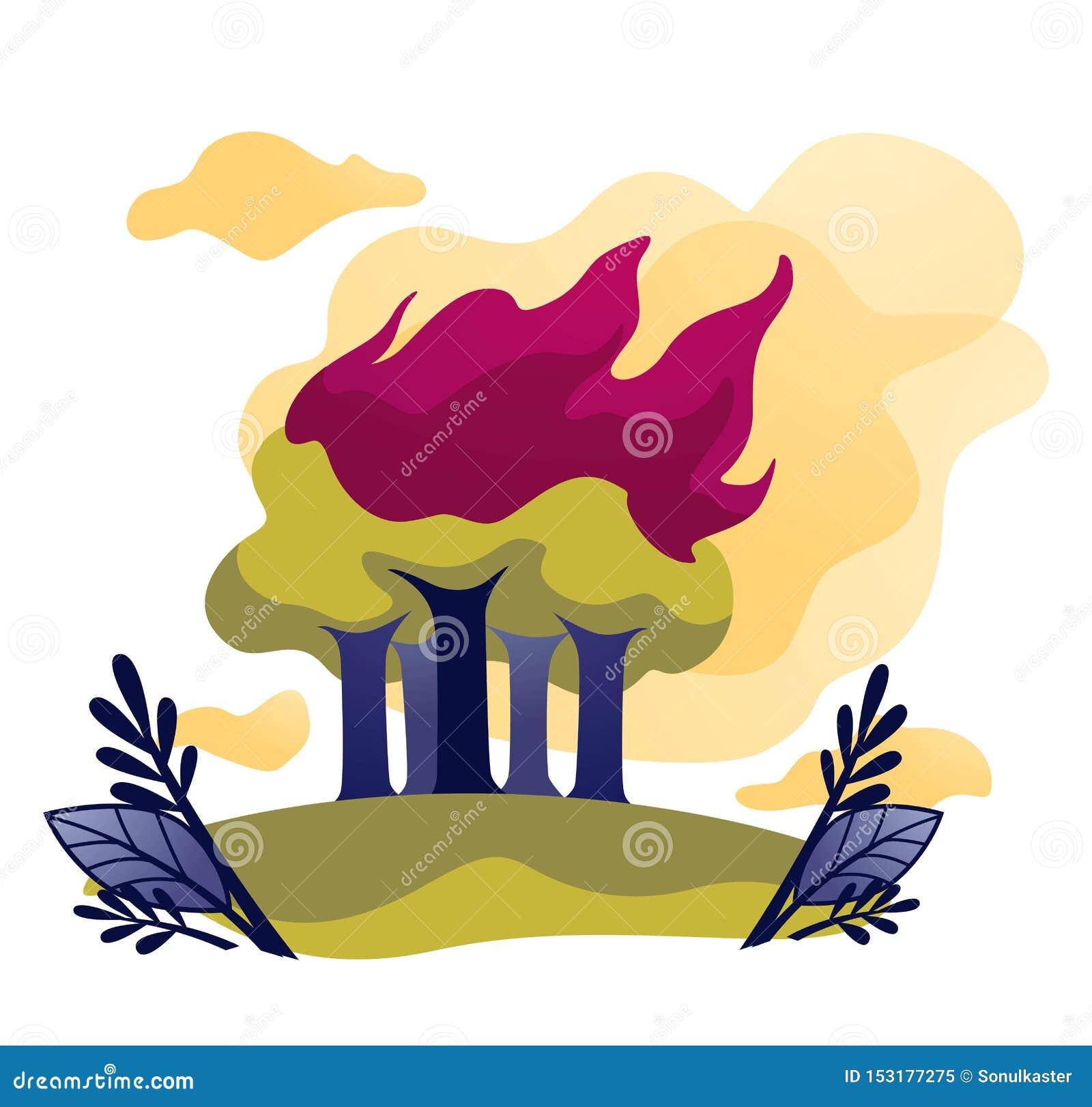 Le feu écologique de problème du feu de forêt dans des arbres forestiers en flamme