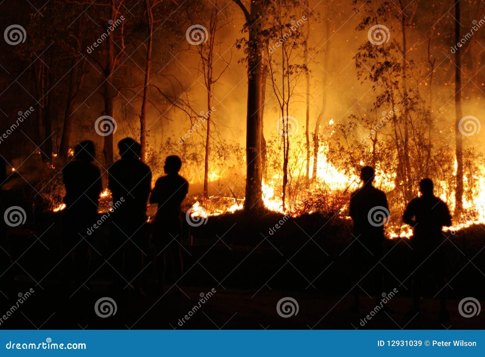 Le feu de brousse de observation de gens
