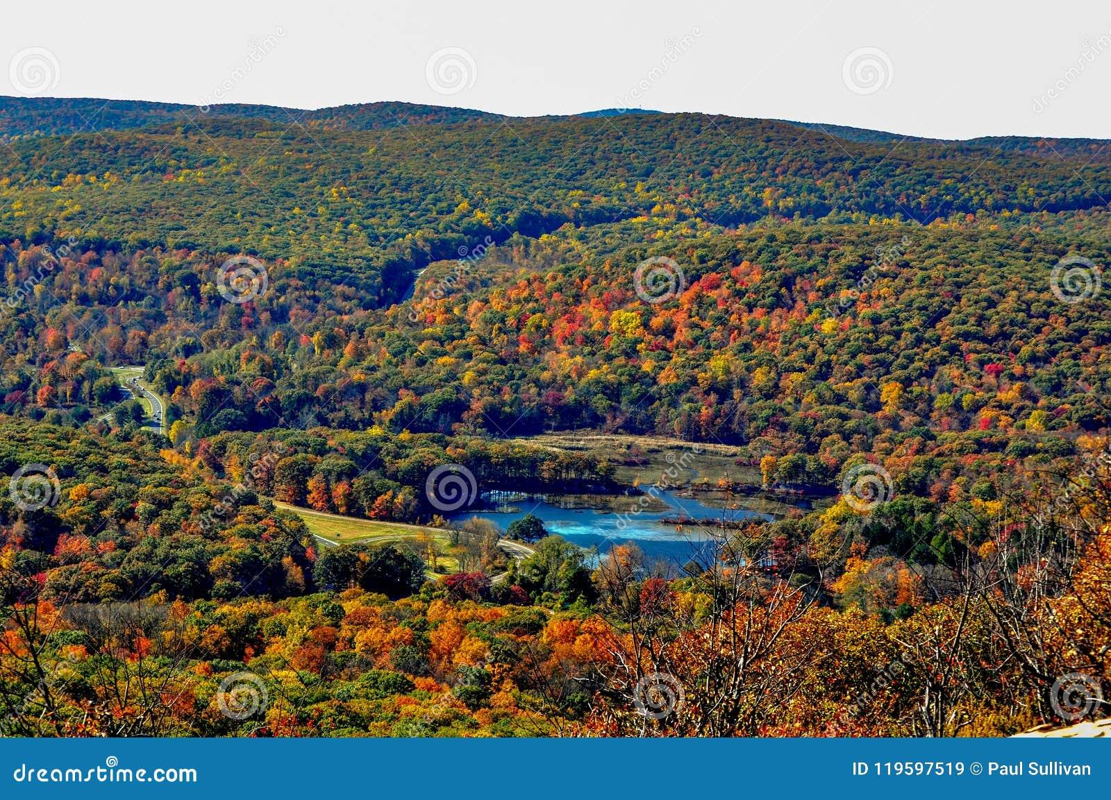 Le feuillage d automne scénique remplit vue montagneuse