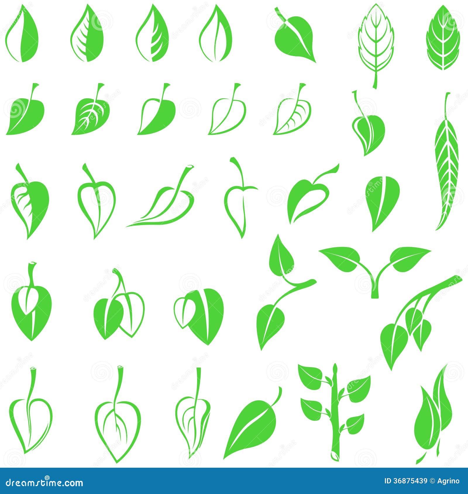 Download Le Foglie Simbolizzano L'insieme Illustrazione Vettoriale - Illustrazione di decorativo, illustrazione: 36875439