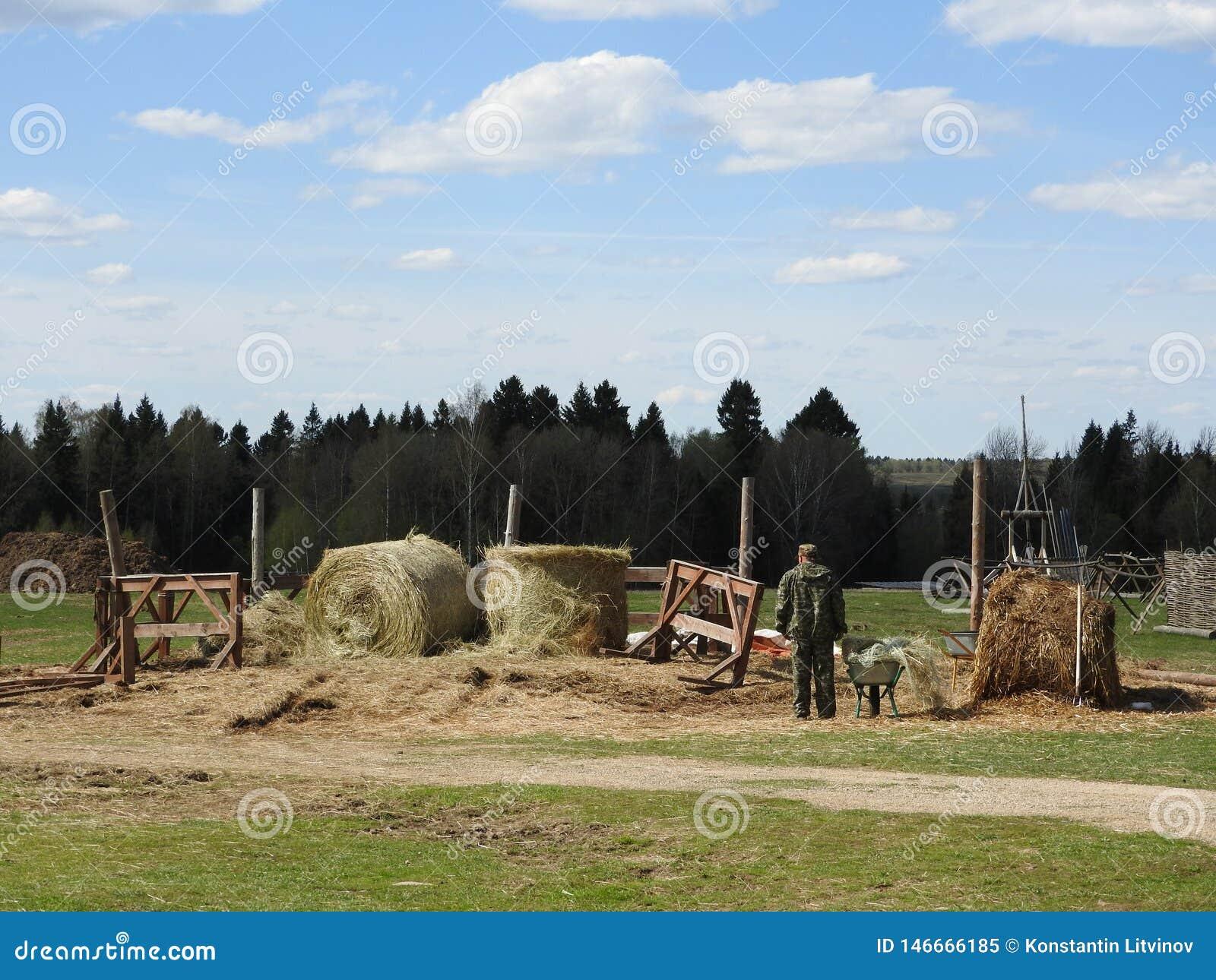 Le foin se situant dans le pr? un jour chaud d ?t?, avec les nuages gonfl?s dans le ciel bleu-fonc?, l agriculteur travaille