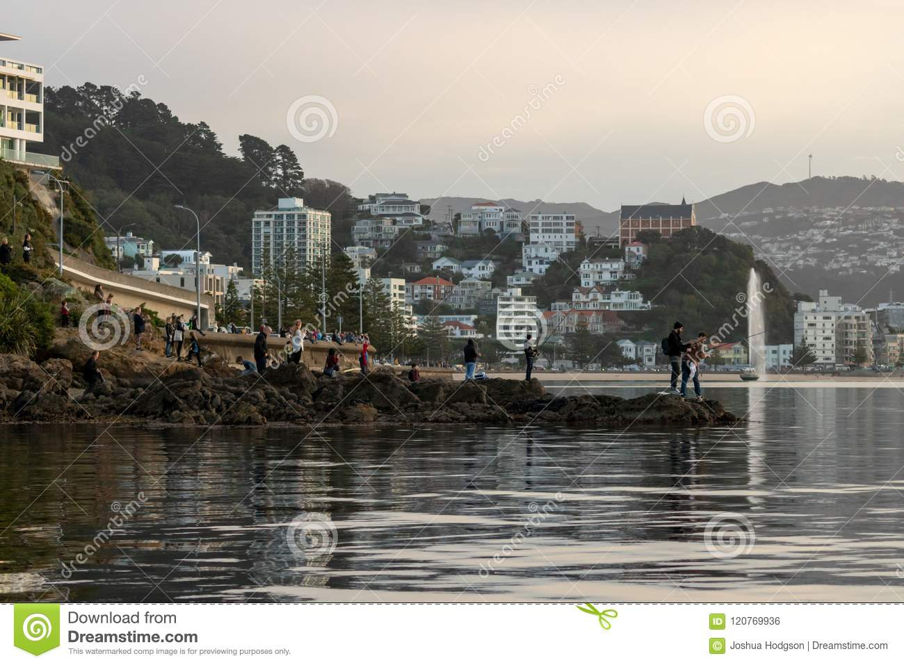 Le folle si riuniscono a Shoreline per osservare la balena, Wellington New Zealand