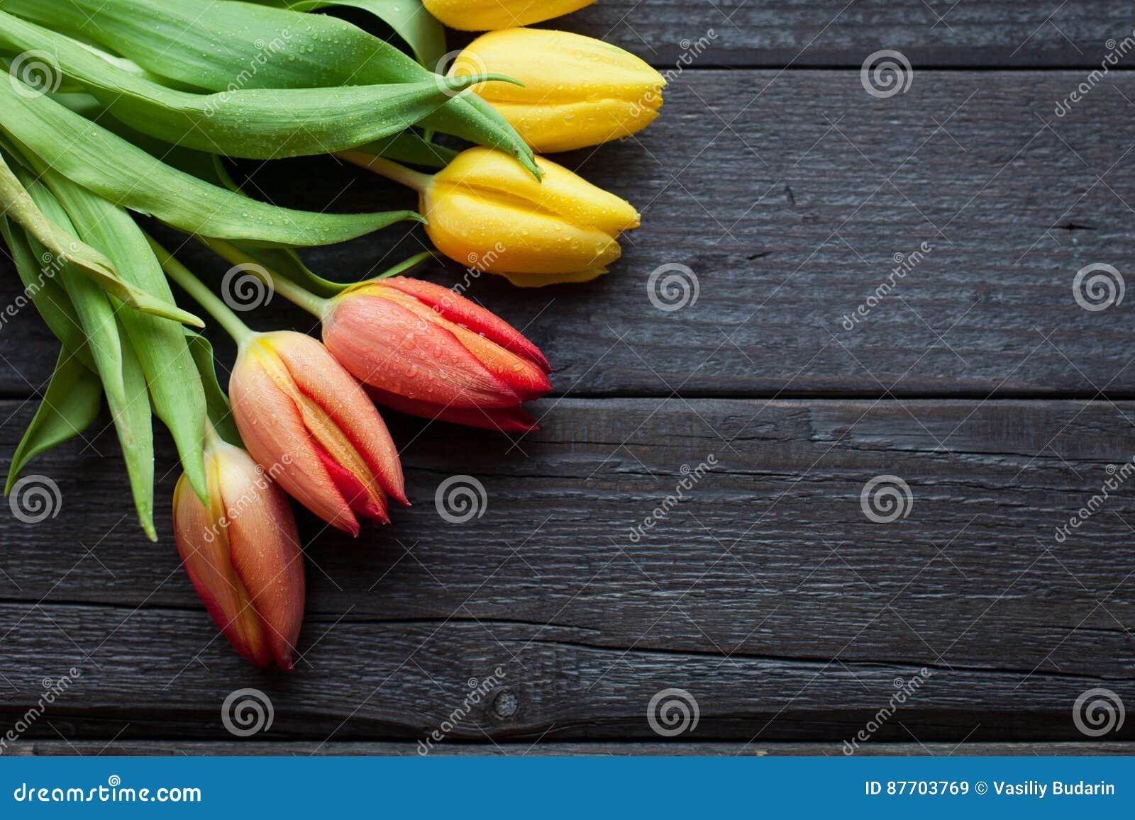 Le fond de fleur pour une carte au jour international du ` s de femmes ou au jour de victoire sur 9 peut Tulipes sur un fond en b