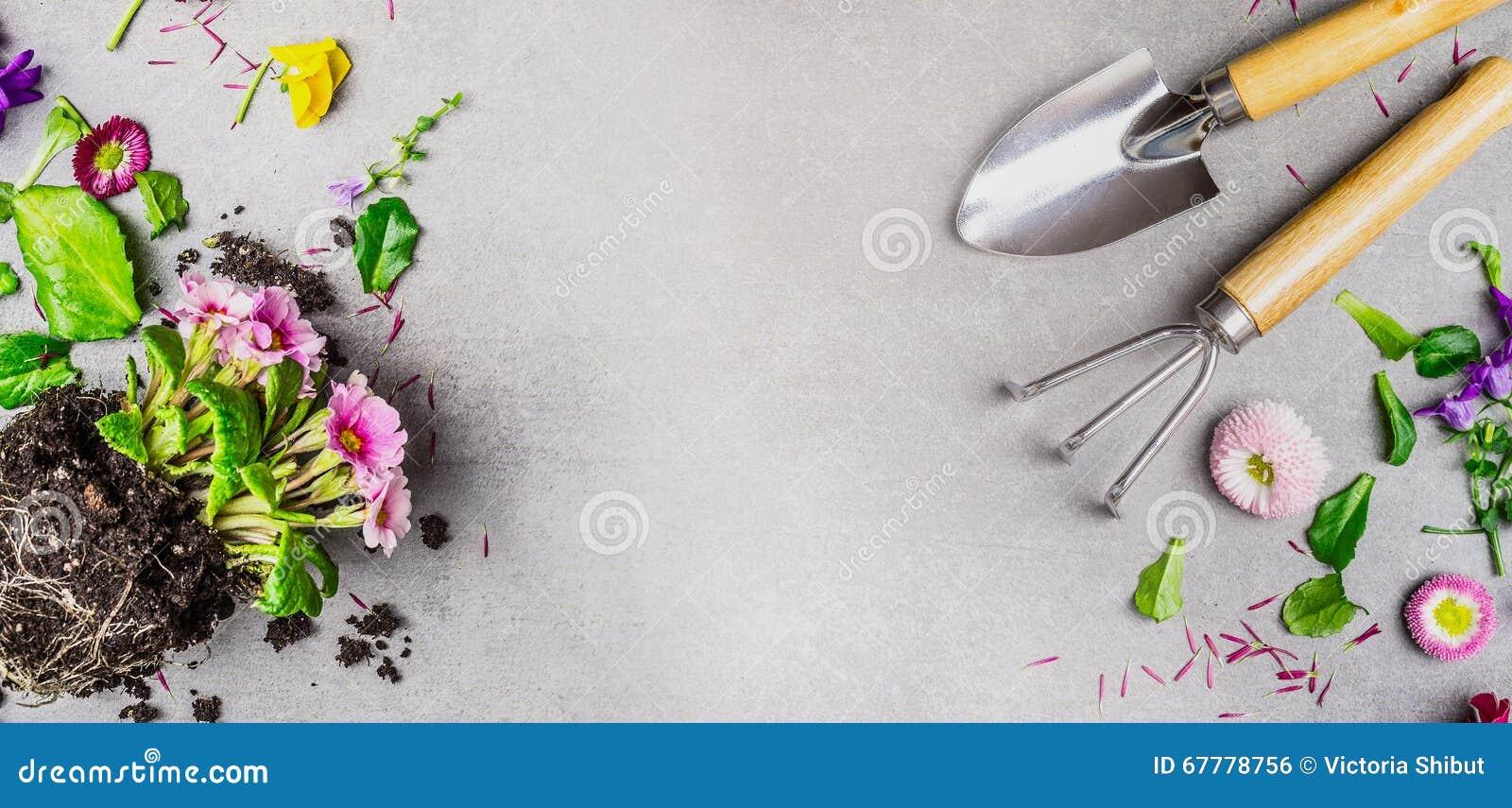 Le fond de jardinage avec des outils de bricolage et l 39 t for Bricolage et jardin