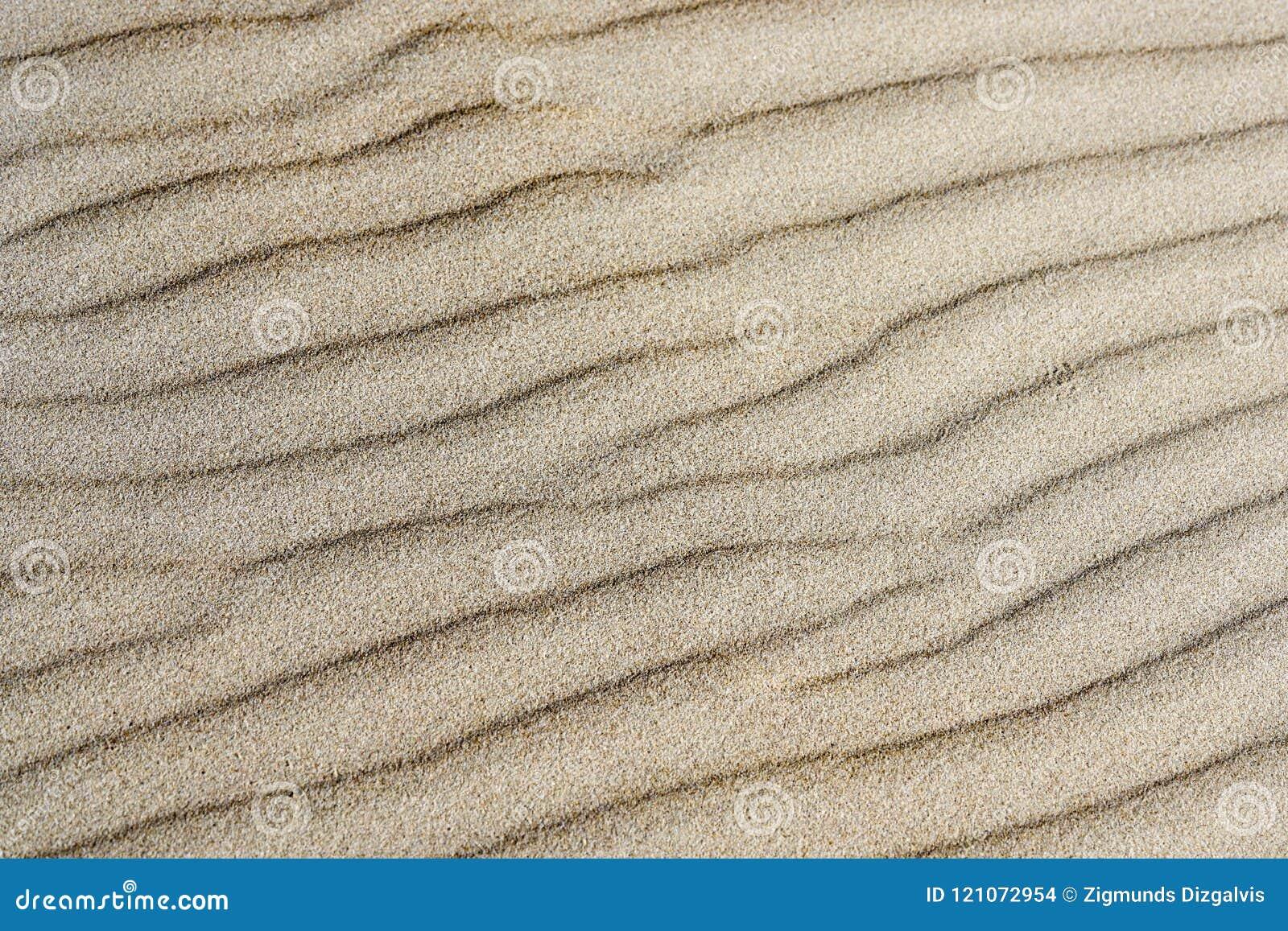 Le fond du sable, vent a formé le soulagement