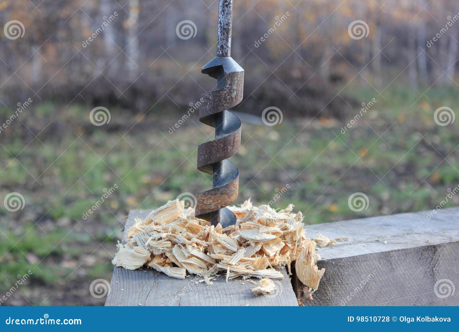 Le foret dans l arbre colle