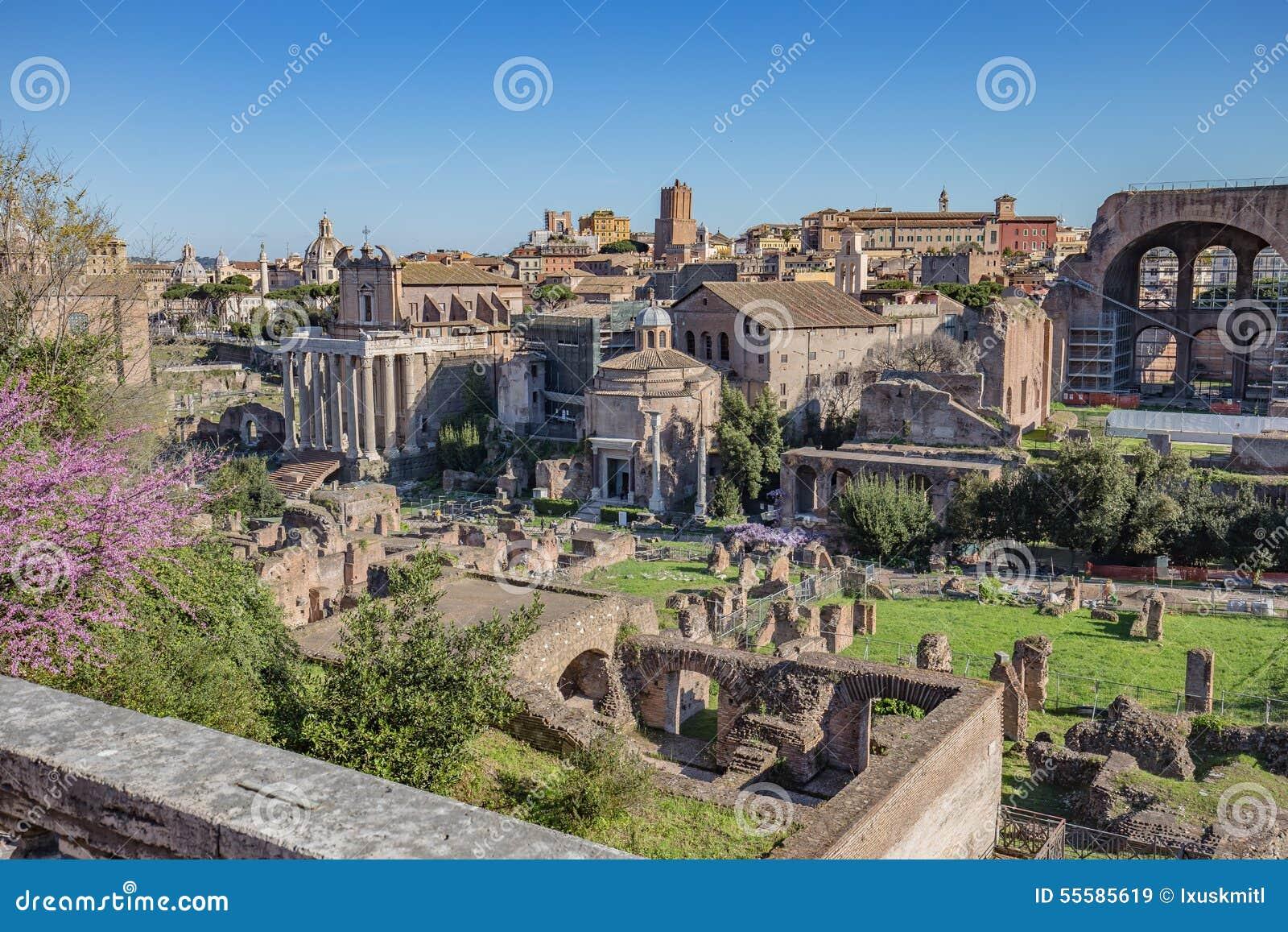 Le forum romain à Rome, Italie