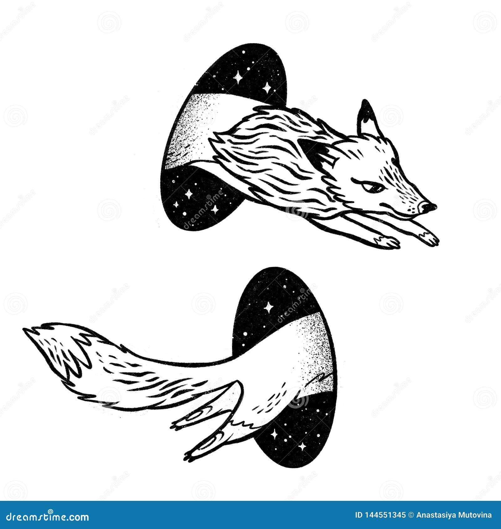 Le Fox Dans La Magie Deplacent Par Telepathie Dessin Noir Et Blanc