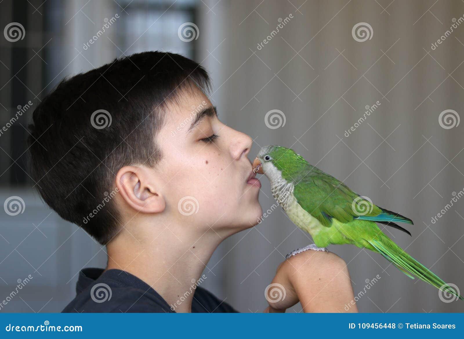 Le garçon d adolescent joue avec son perroquet vert de quaker