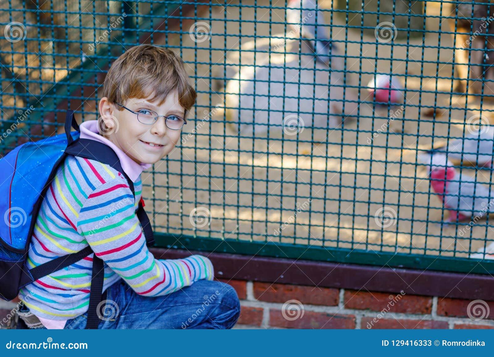 Le garçon de petit enfant avec des verres et le sac à dos admirent différents oiseaux comme le perroquet en parc de zoo Écolier h