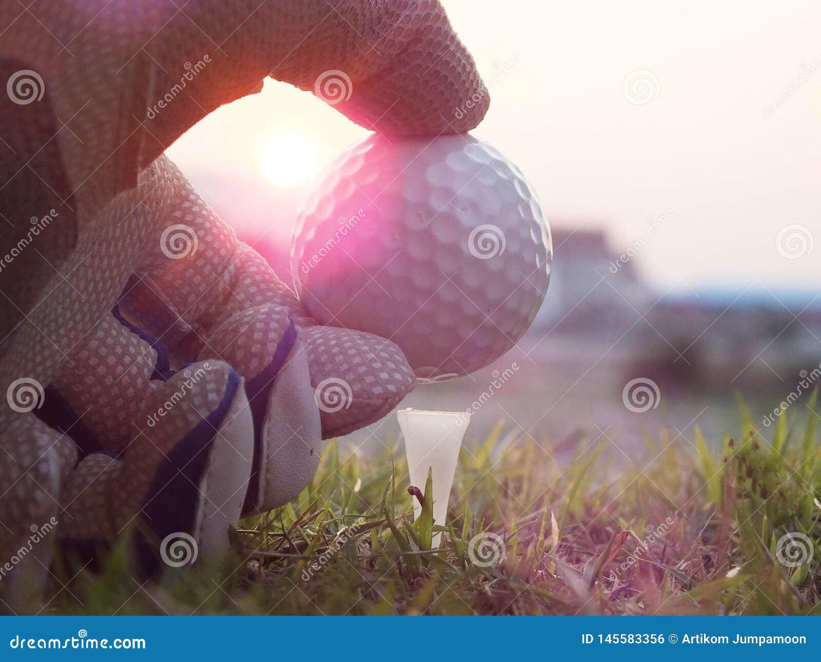 Le golf sur la pi?ce en t blanche sur la pelouse verte l? est soleil