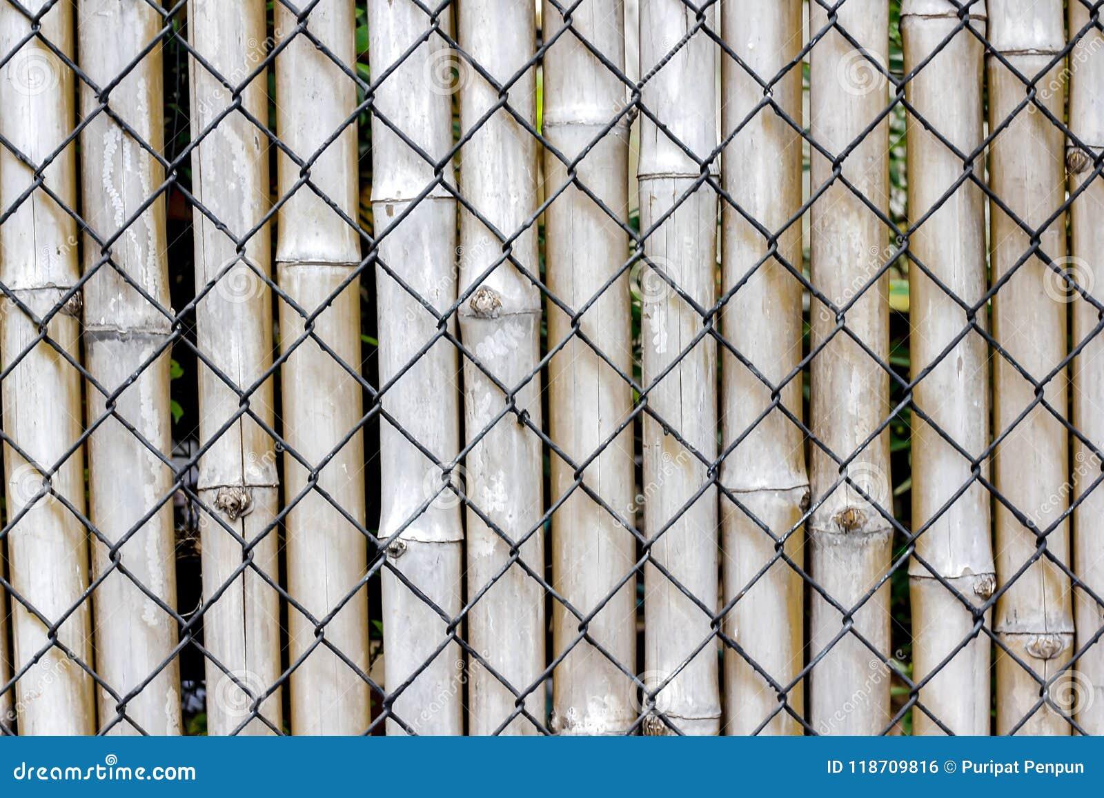 Le Grillage Et Le Bambou Sont Employés Pour Faire Des Barricades ...