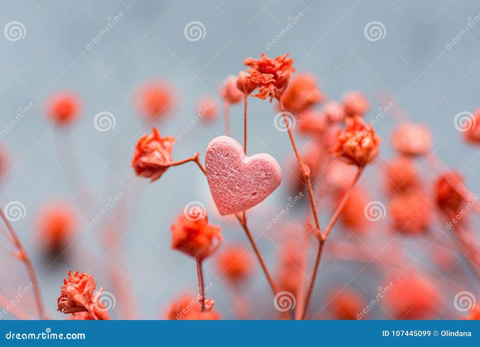 Le groupe de petites fleurs sensibles rouges choisissent la forme Sugar Candy de coeur sur Grey Background foncé Jour romantique