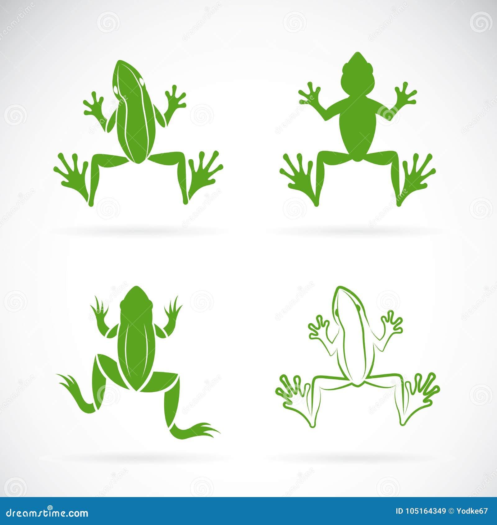 Le groupe de vecteur de grenouilles conçoivent sur le fond blanc