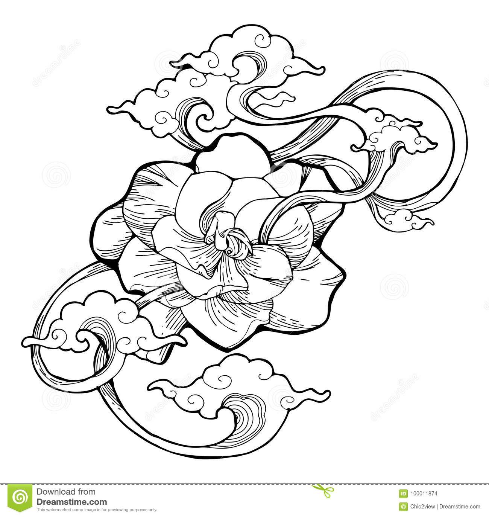 Le Jasmin De Cap Le Jasmin De Gardenia Et La Conception De Nuage D
