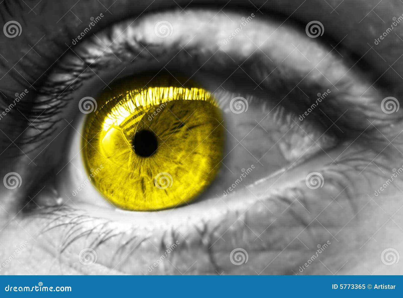 le jaune a modifi la tonalit l 39 oeil photo libre de droits image 5773365. Black Bedroom Furniture Sets. Home Design Ideas