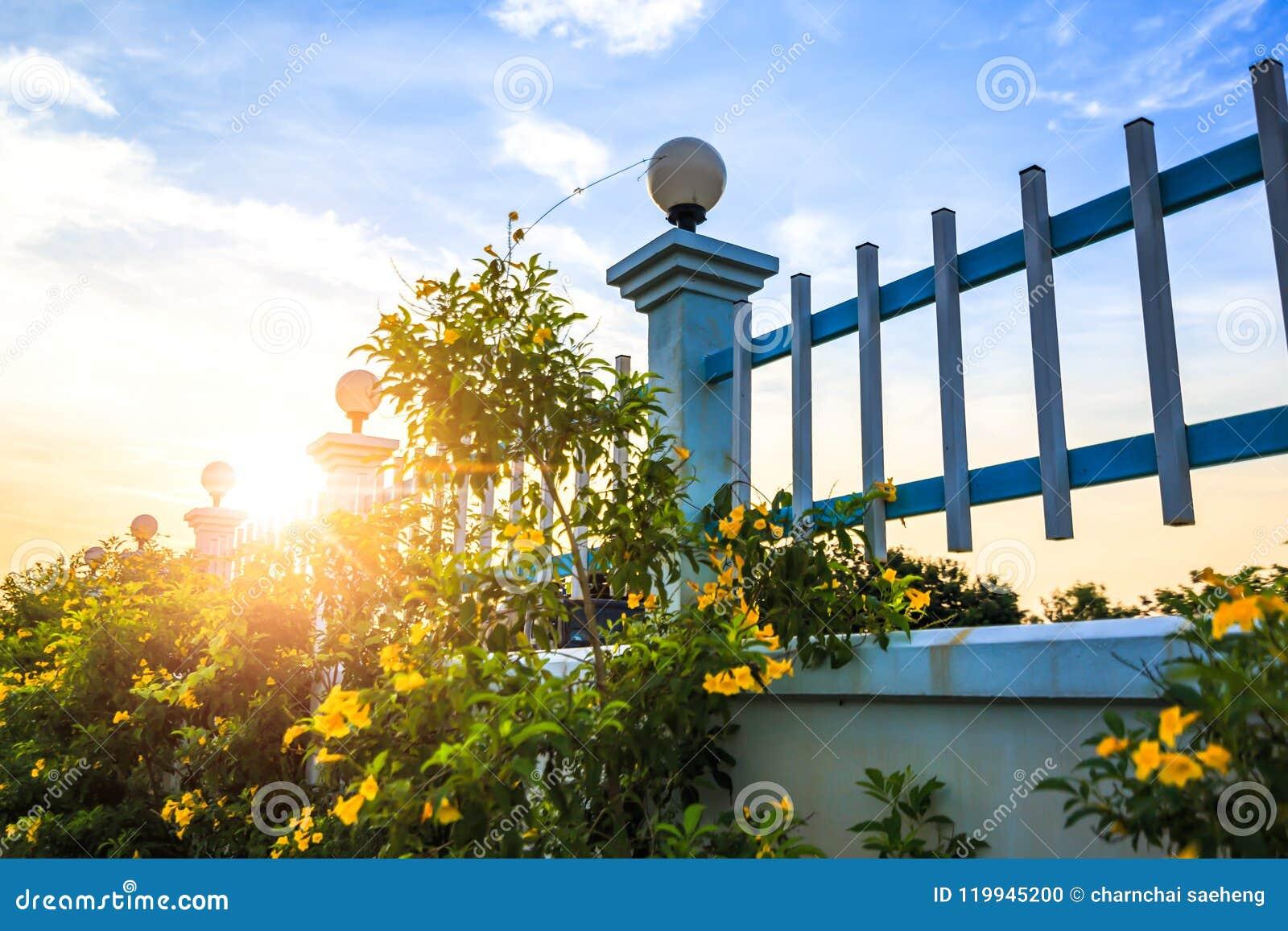 Le jaune s abaisse près de la barrière et du coucher du soleil avec le nuage