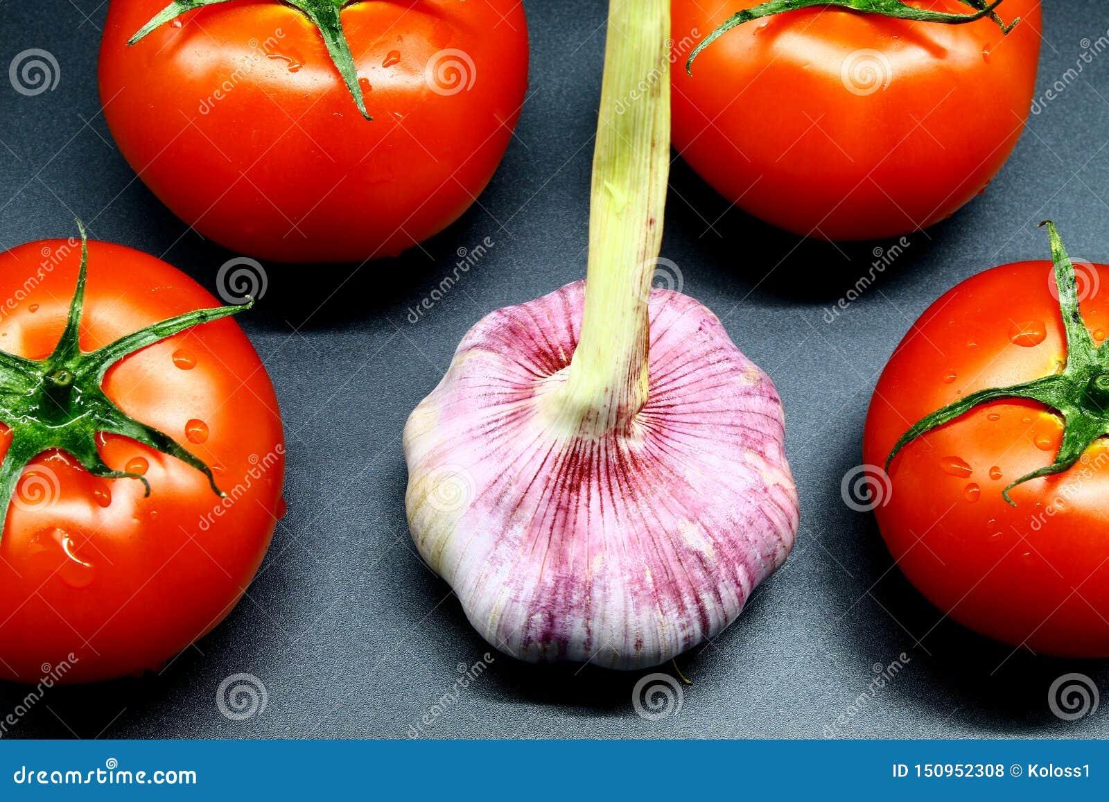 Le jeune ail a entouré par quatre tomates juteuses et mûres rouges sur un fond noir