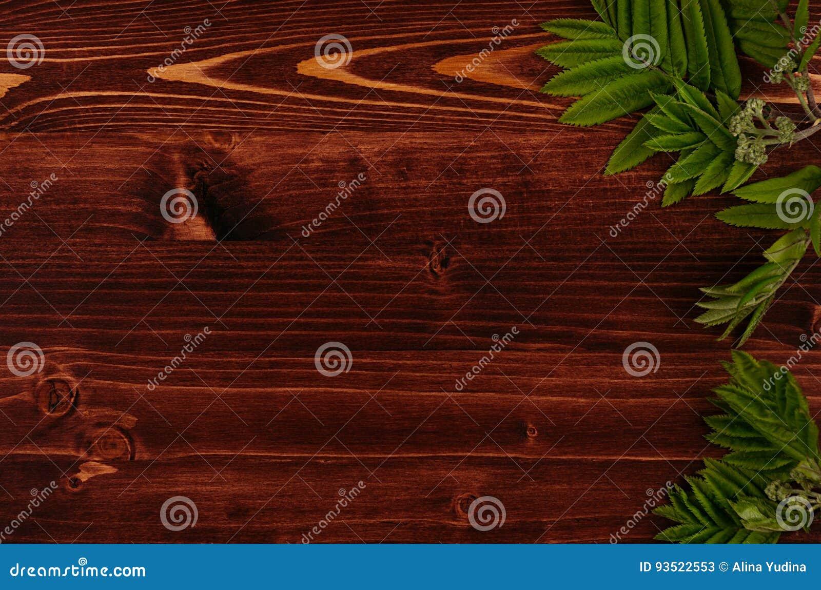 Le jeune vert d été part sur le fond de conseil en bois de brun de vintage Cadre décoratif avec l espace de copie, vue supérieure