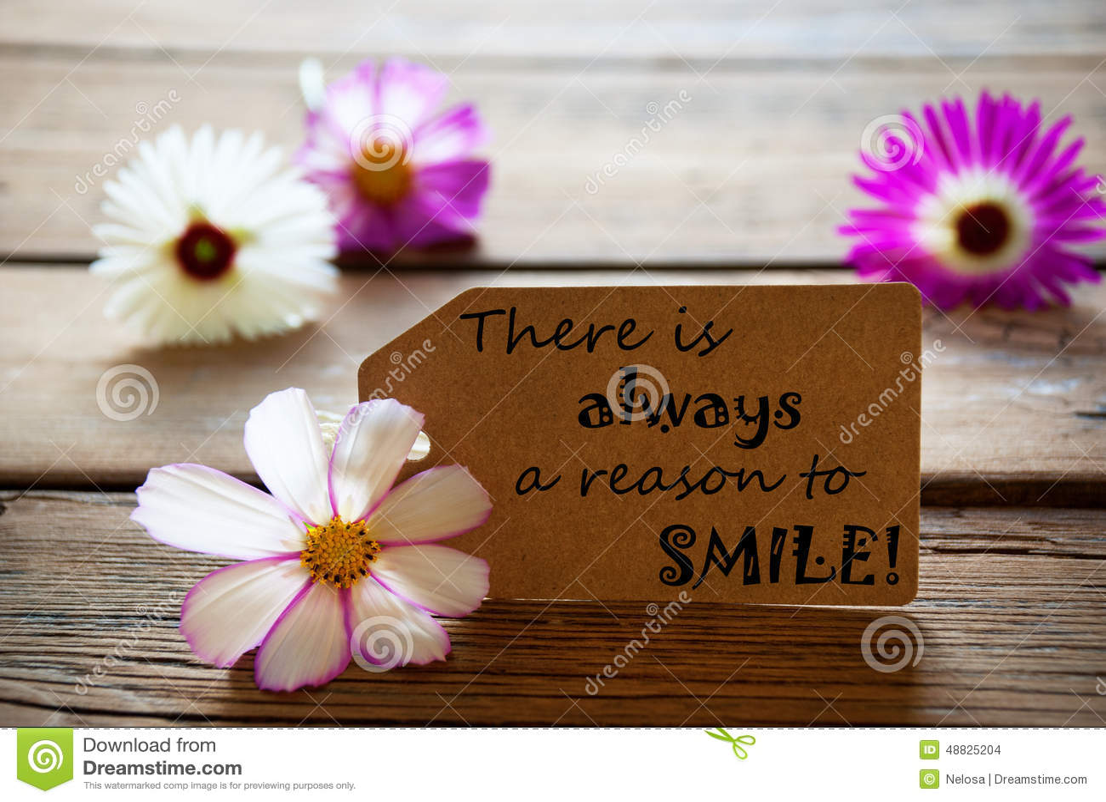 citation sourire à la vie