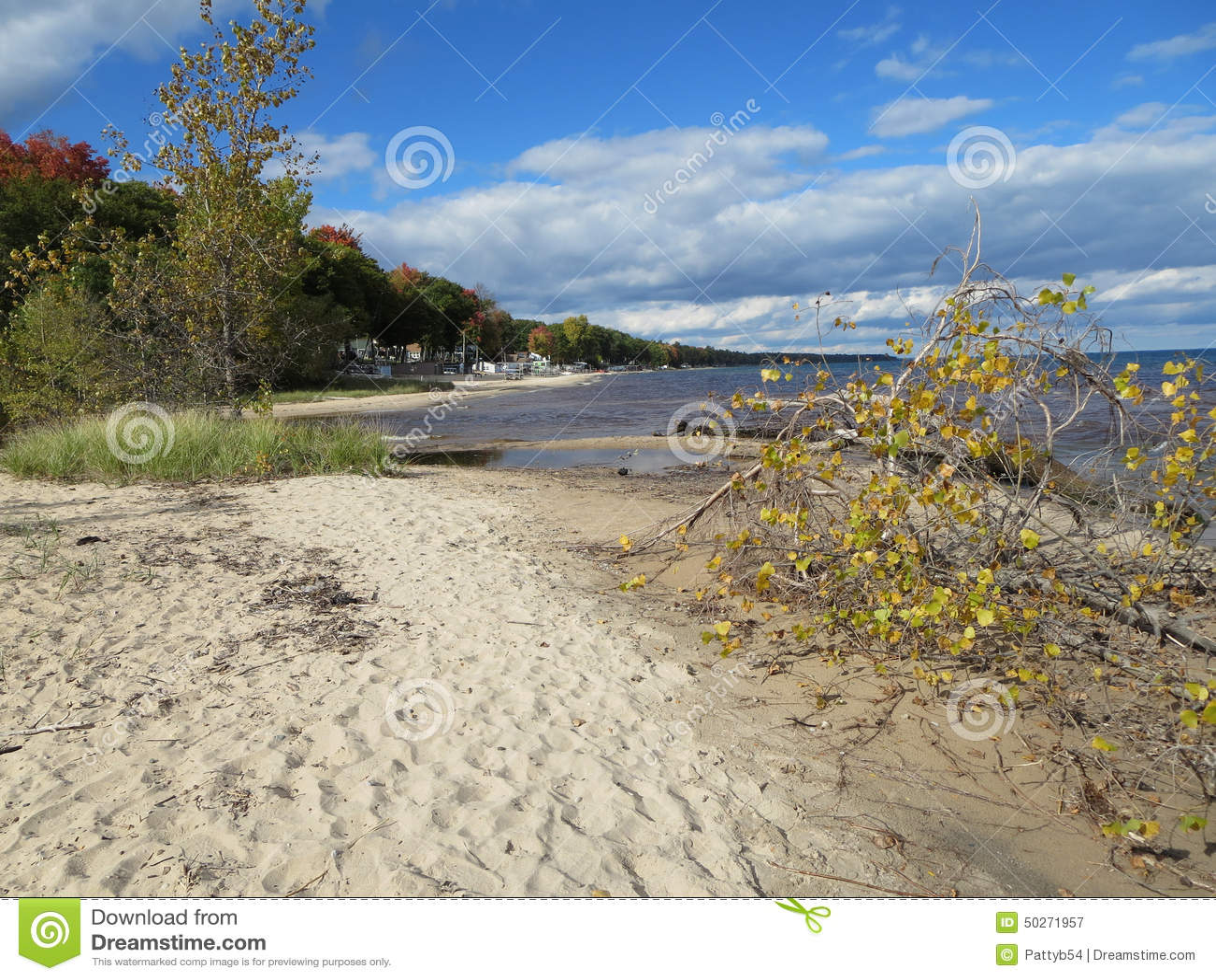 Le lac Huron Shoreline en automne