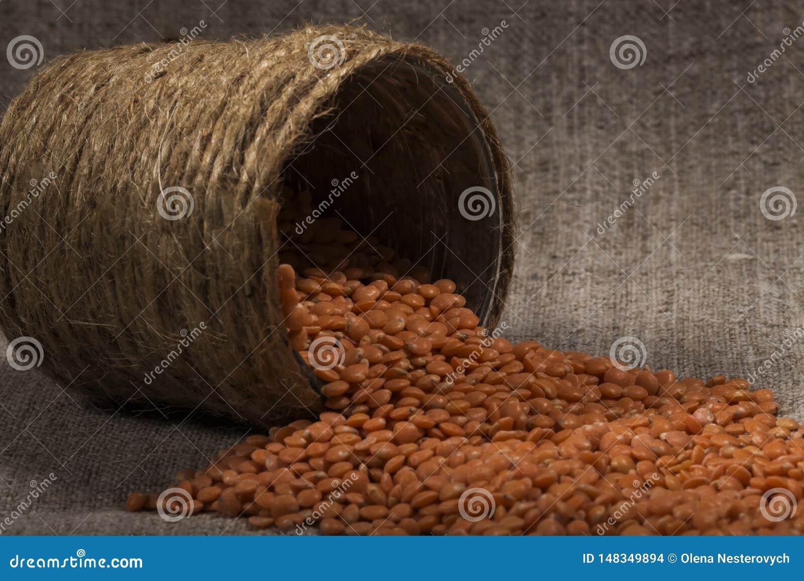 Le lenticchie rosse hanno versato fuori, spargimento delle latte di fatto a mano struttura della lenticchia, modello della lentic