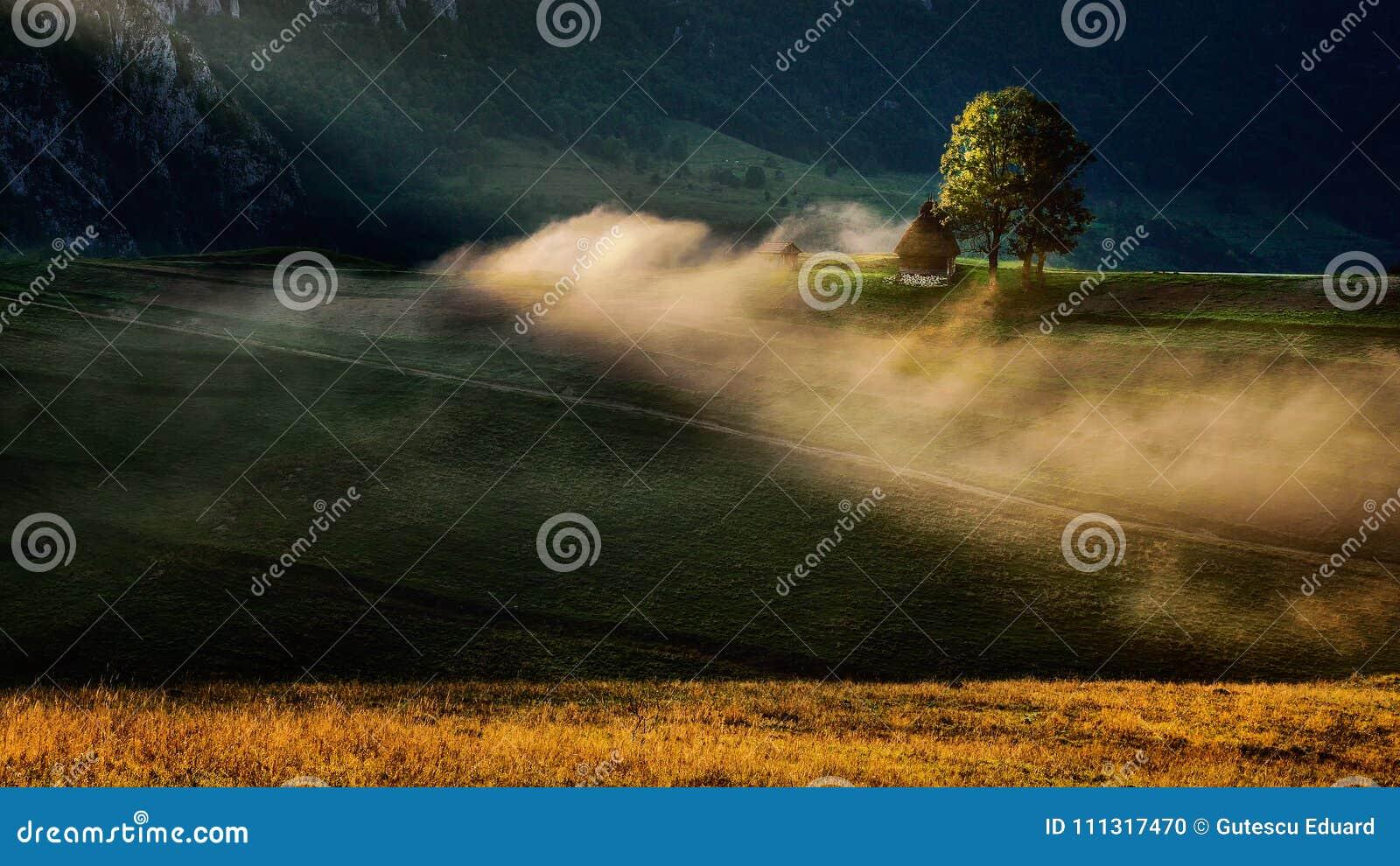 Le lever de soleil magnifique dans la région de la Transylvanie avec la brume et le soleil rayonnent
