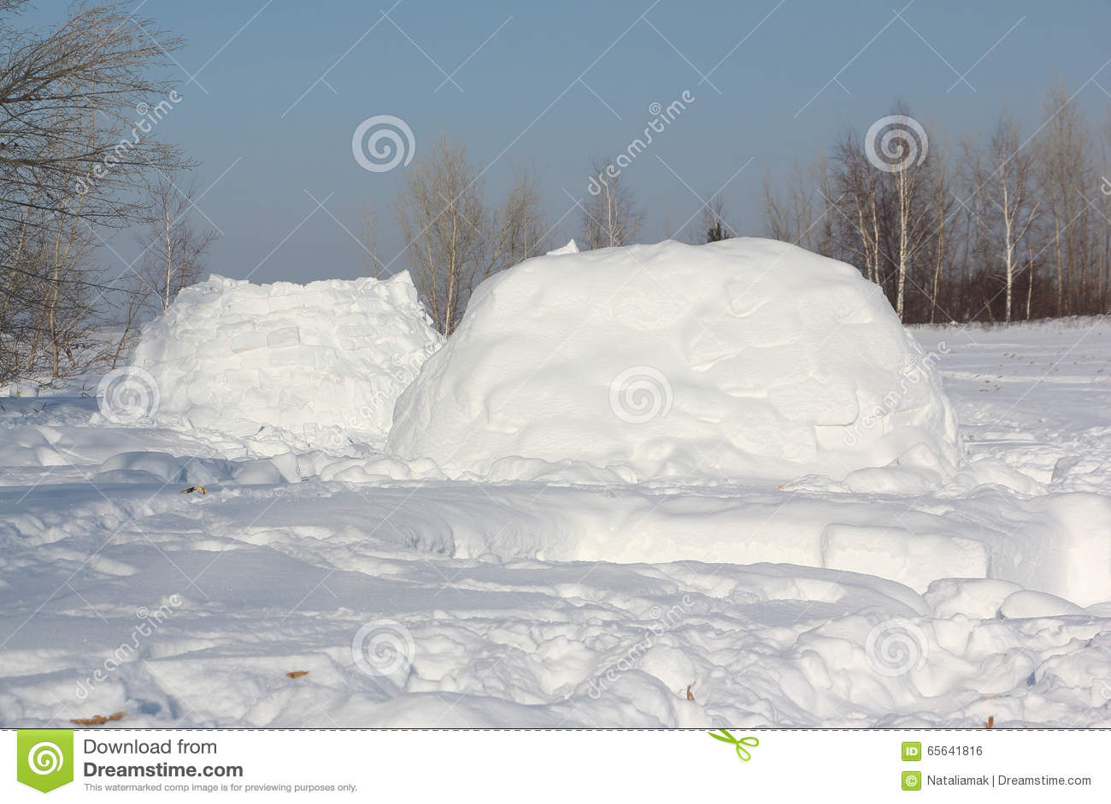 Le logement un igloo sur une clairière de neige