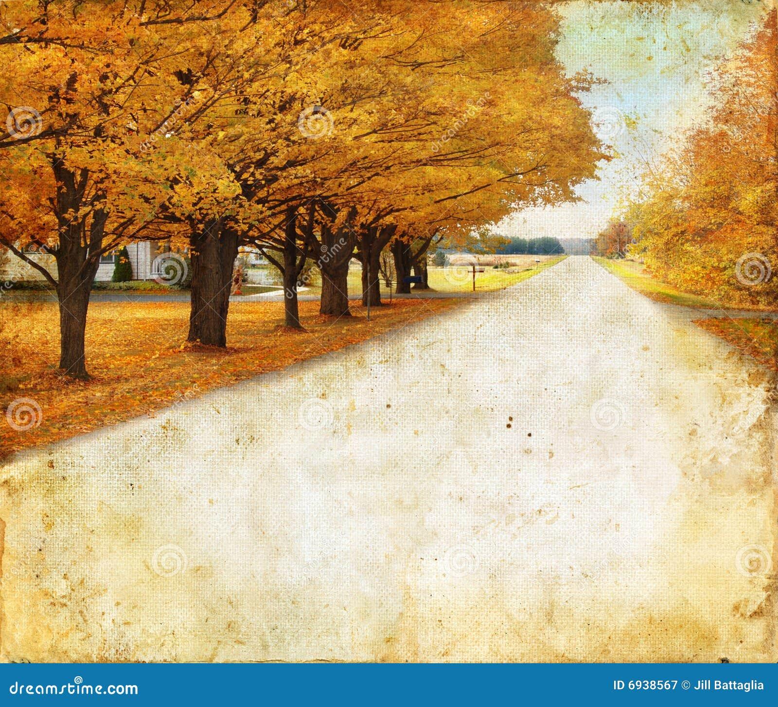 Le long des arbres ruraux de route grunge de fond d automne