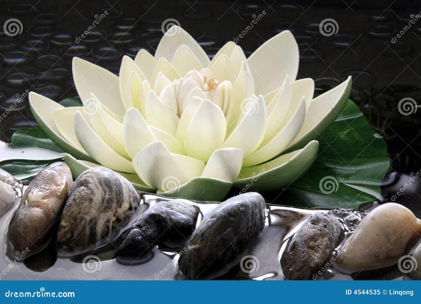 Le lotus artificiel photo libre de droits image 4544535 - La fleur de lotus ...