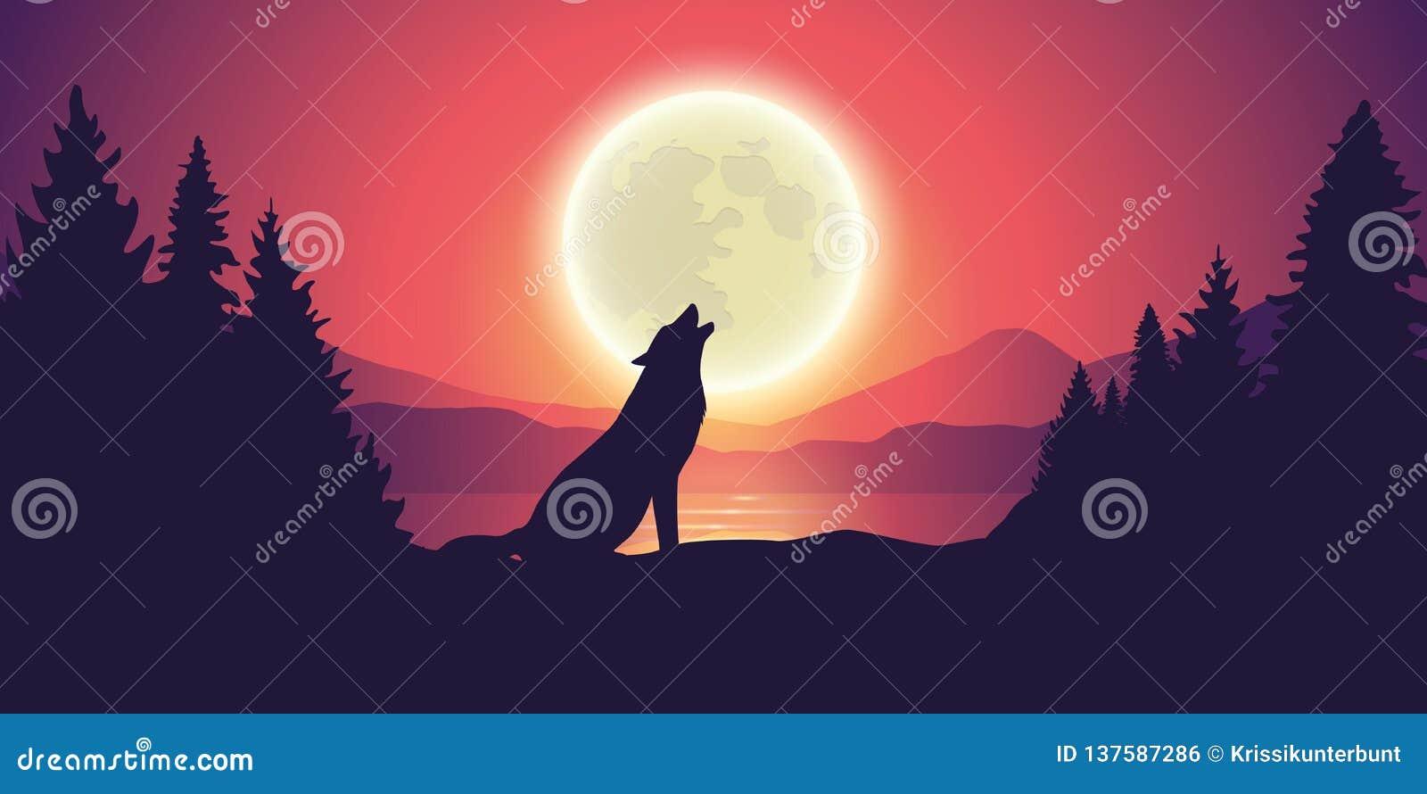 Le Loup Hurle La Lune Par Le Lac Au Paysage De Forêt Et De