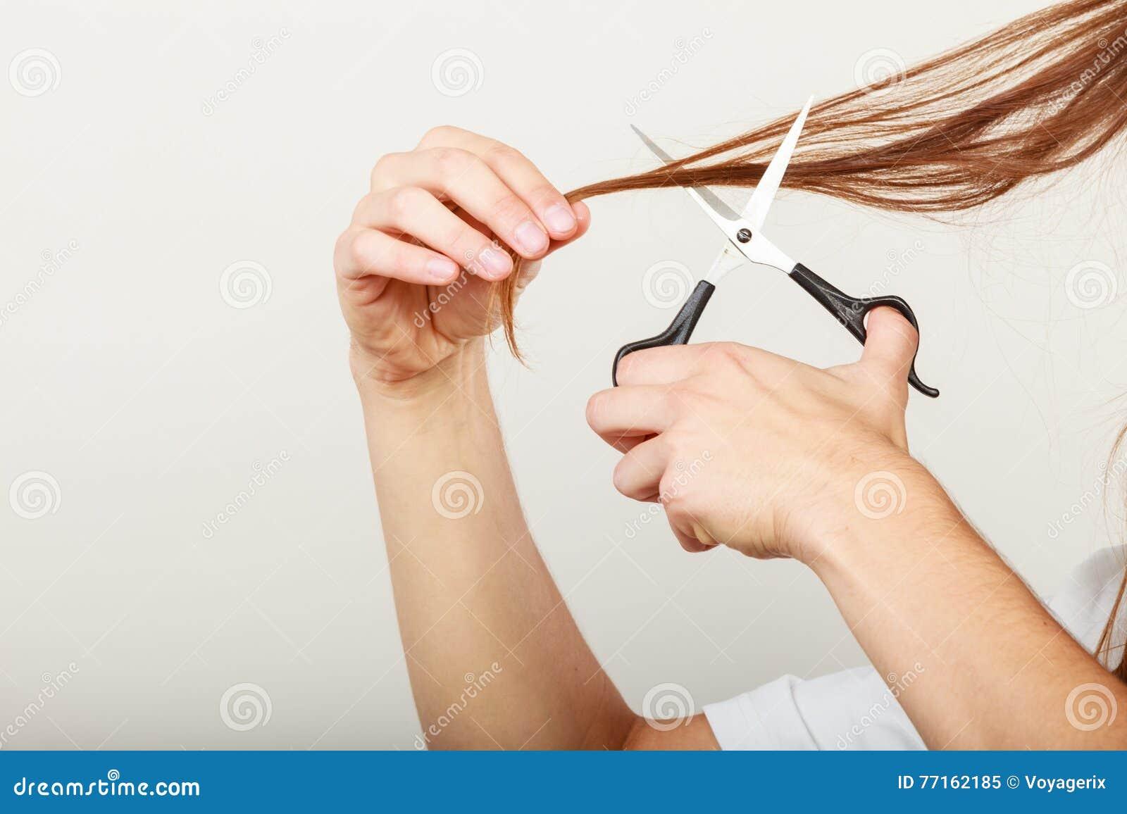 Le mâle remet couper de longs cheveux