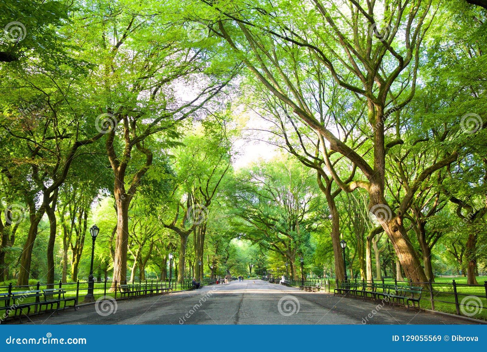 Le mail dans Central Park