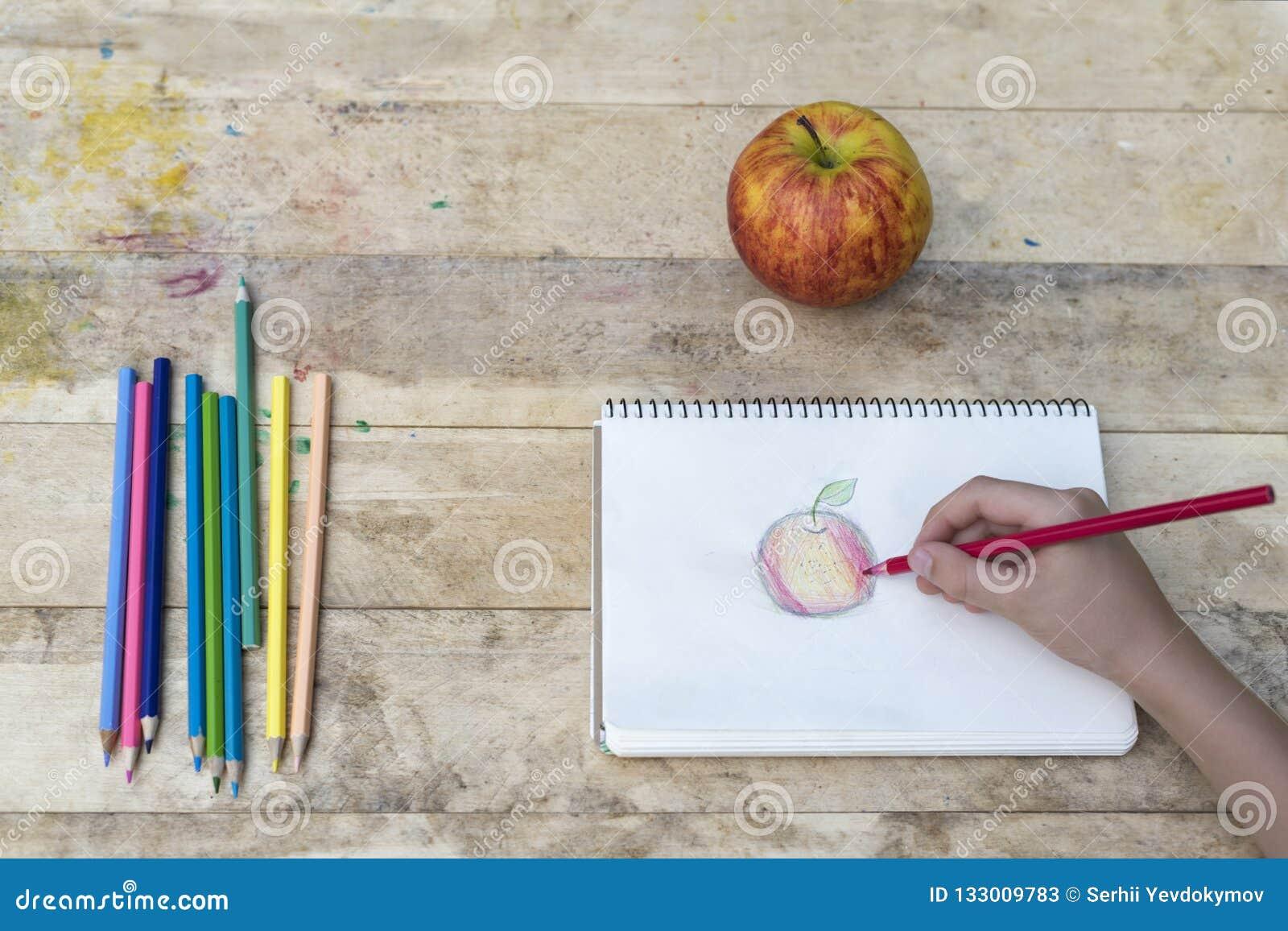 Le mani dei bambini disegnano una mela con le matite colorate Vista superiore