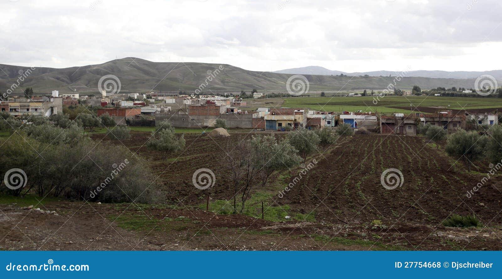 Le Maroc pastoral