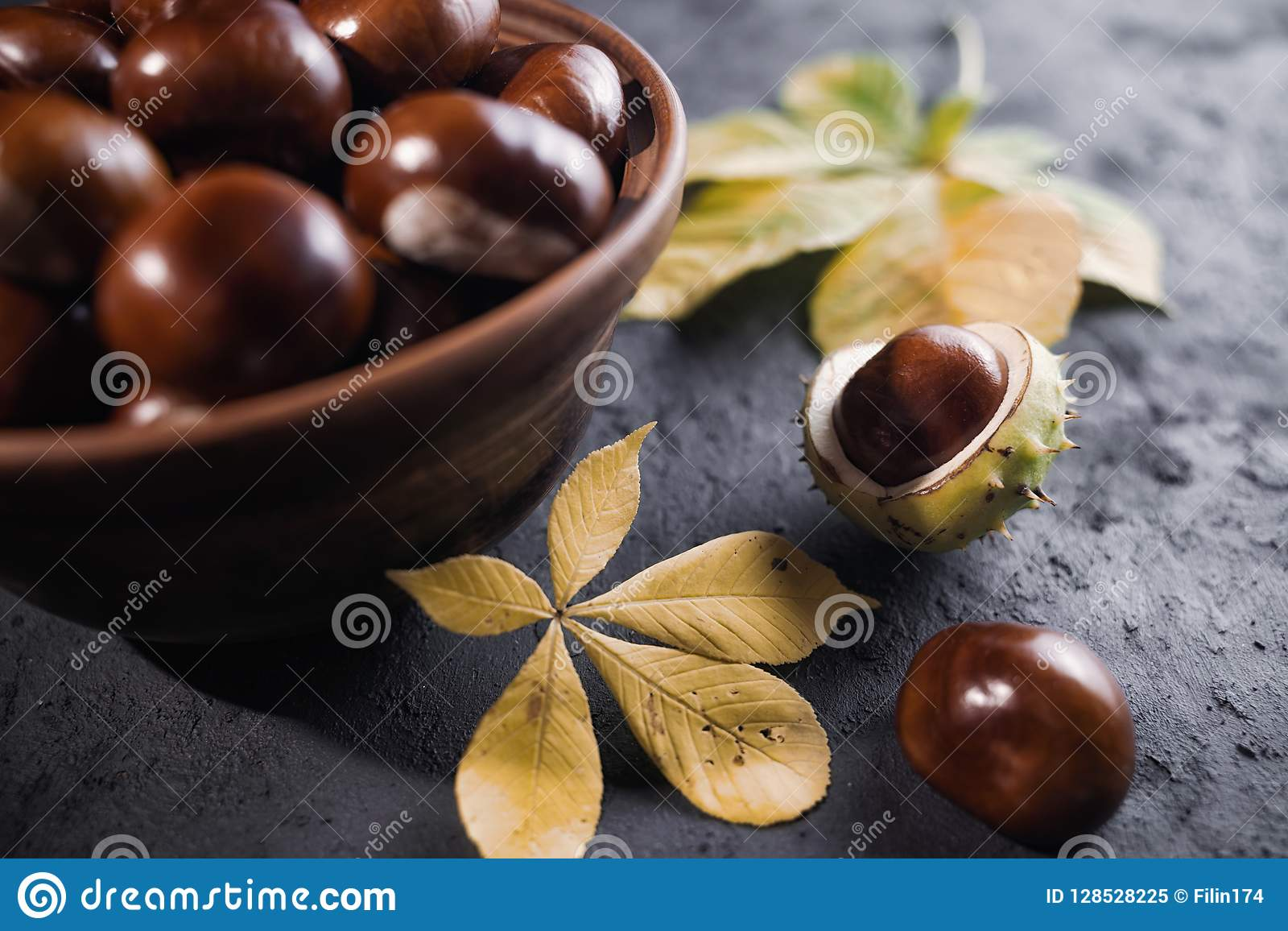 Le marron d Inde vert et épineux porte des fruits dans l intérieur