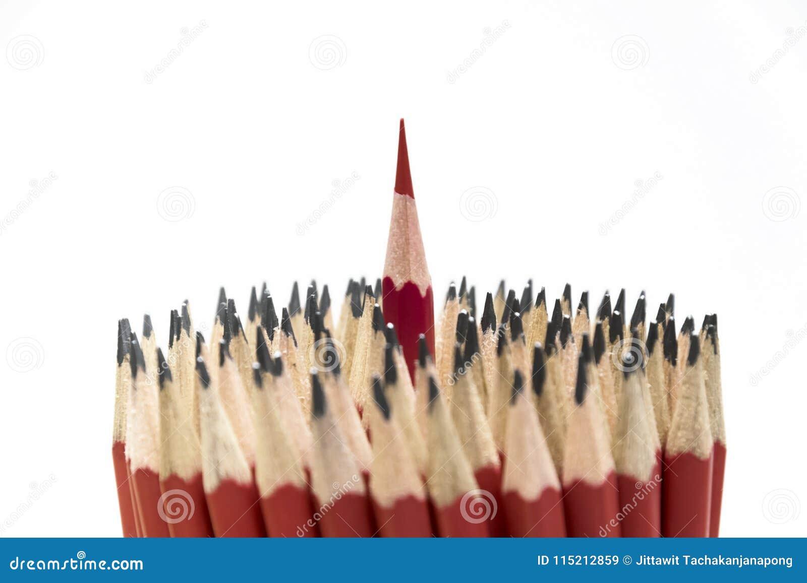 Le matite rosse stanno egualmente fuori dalle molte folle