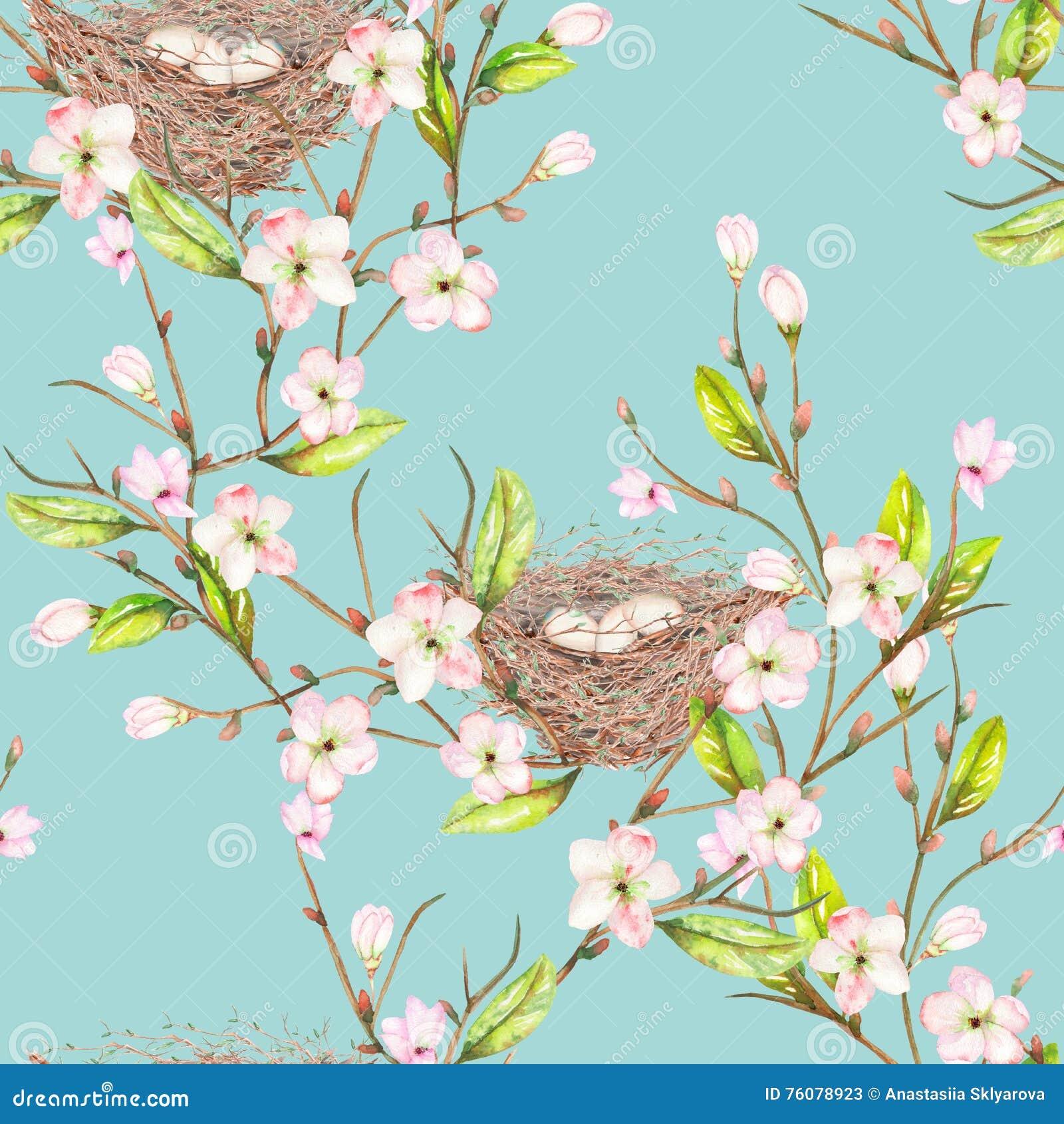 Le modèle sans couture de l oiseau d aquarelle niche sur les branches avec des fleurs de ressort, tirées par la main sur un fond