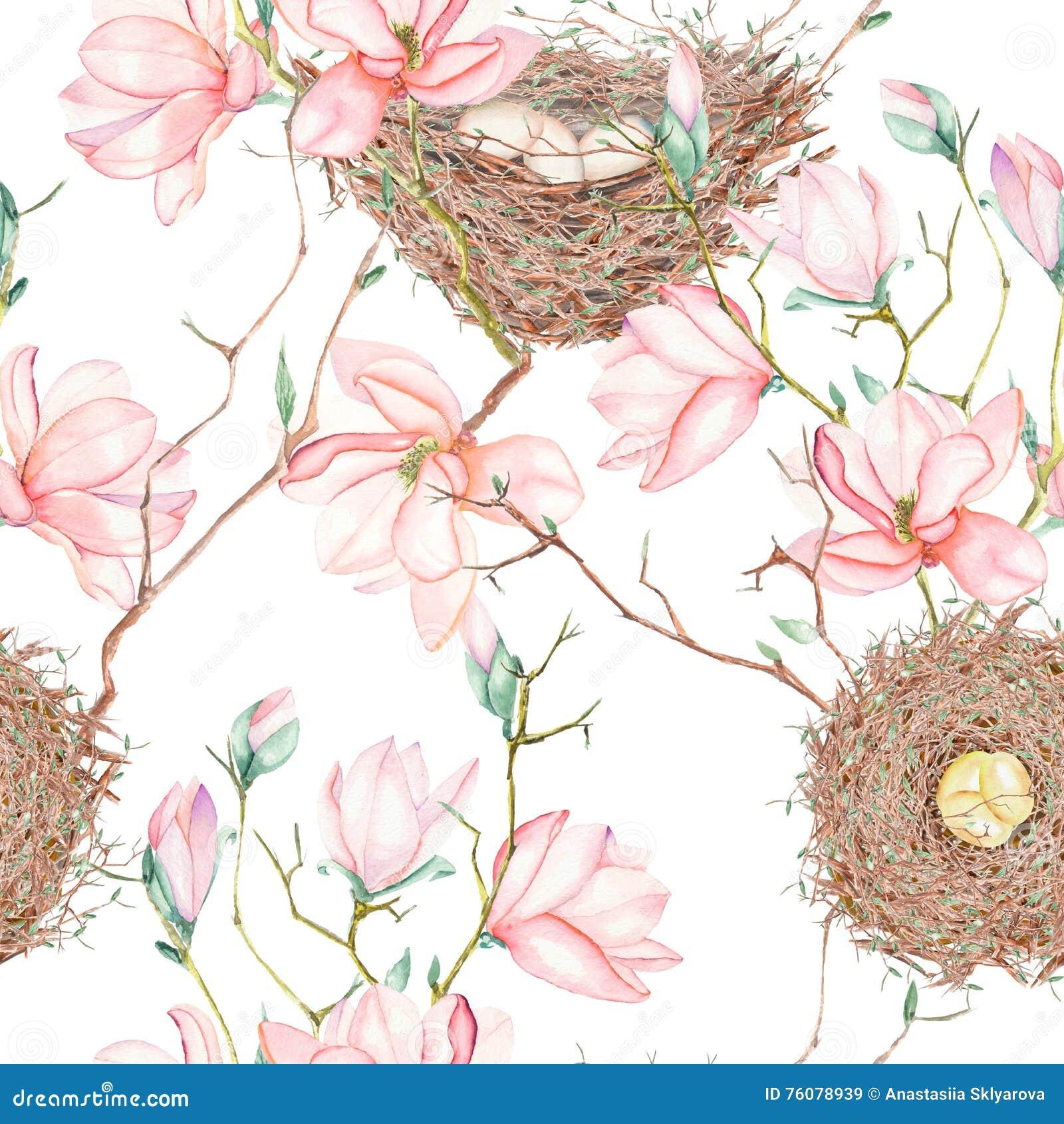 Le modèle sans couture de l oiseau d aquarelle niche sur les branches d arbre avec des fleurs de magnolia, tirées par la main sur