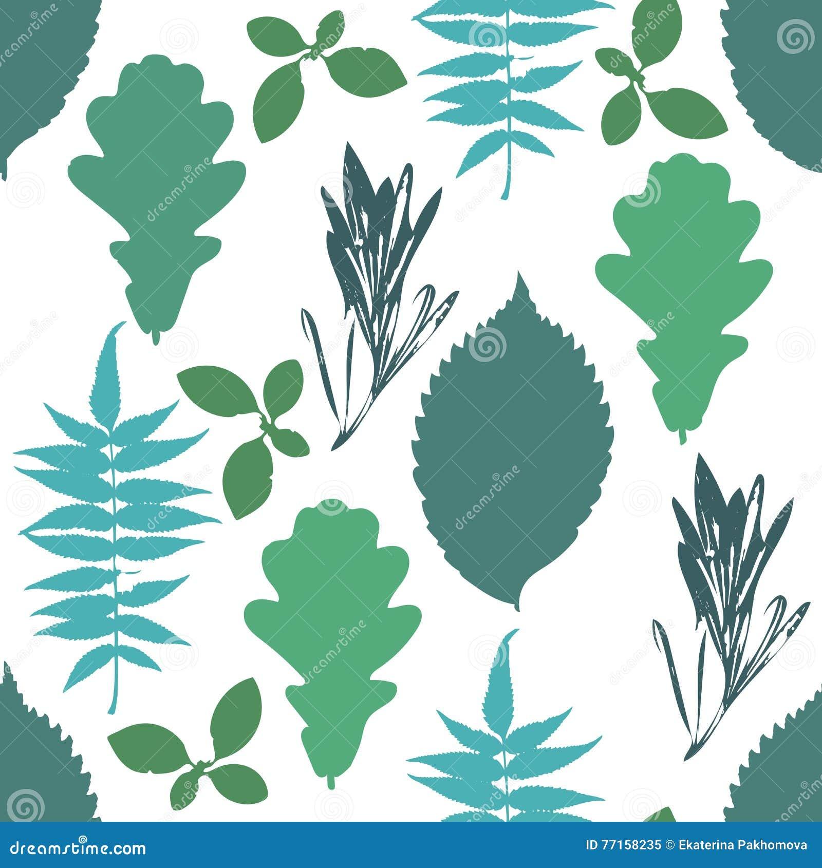 Le modèle sans couture floral avec l arbre bleu d automne et vert grunge part sur le fond blanc