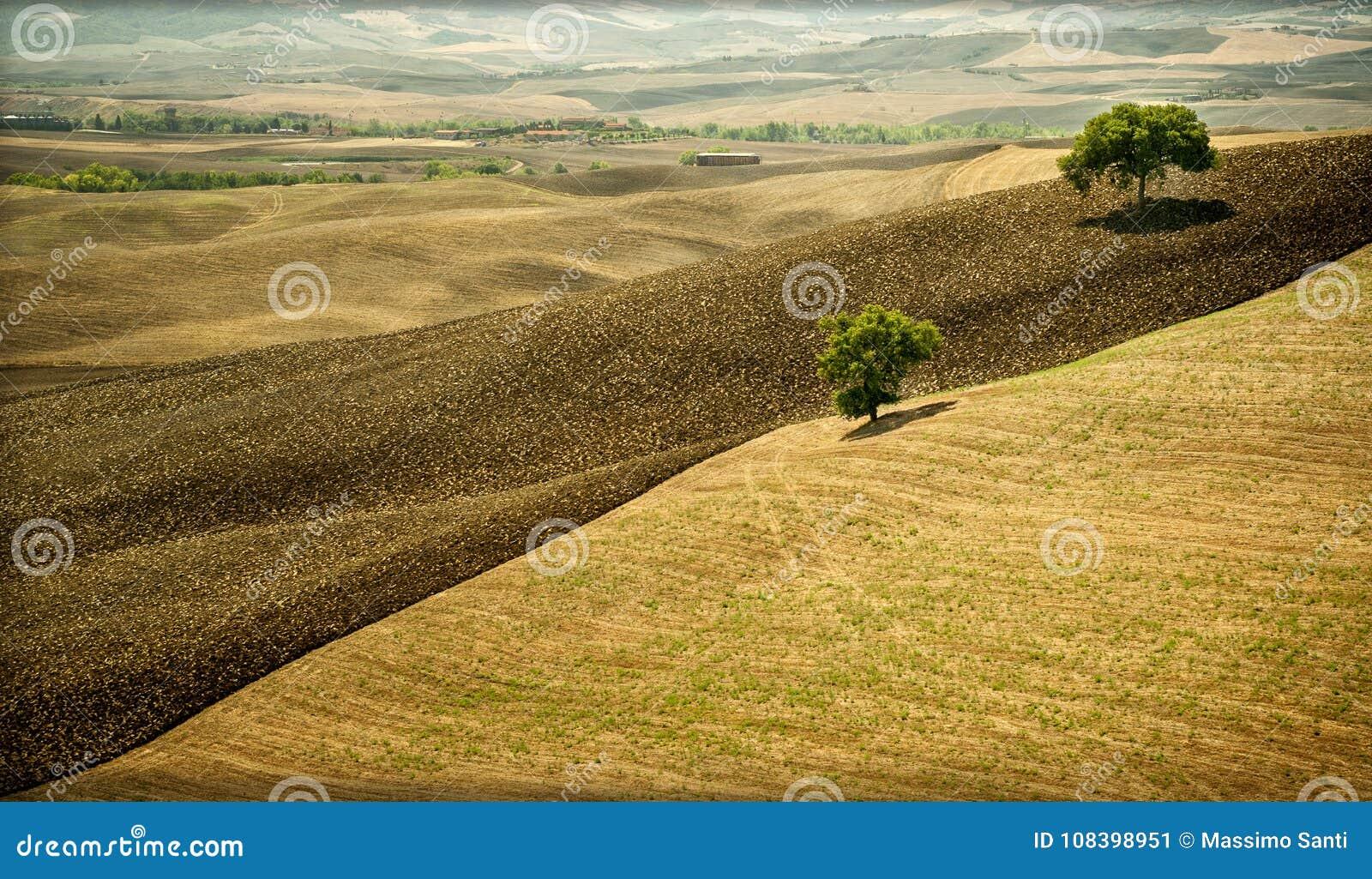 Le ` Orcia de Val d, est une région de la Toscane, avec les collines douces cultivées principalement avec du ce