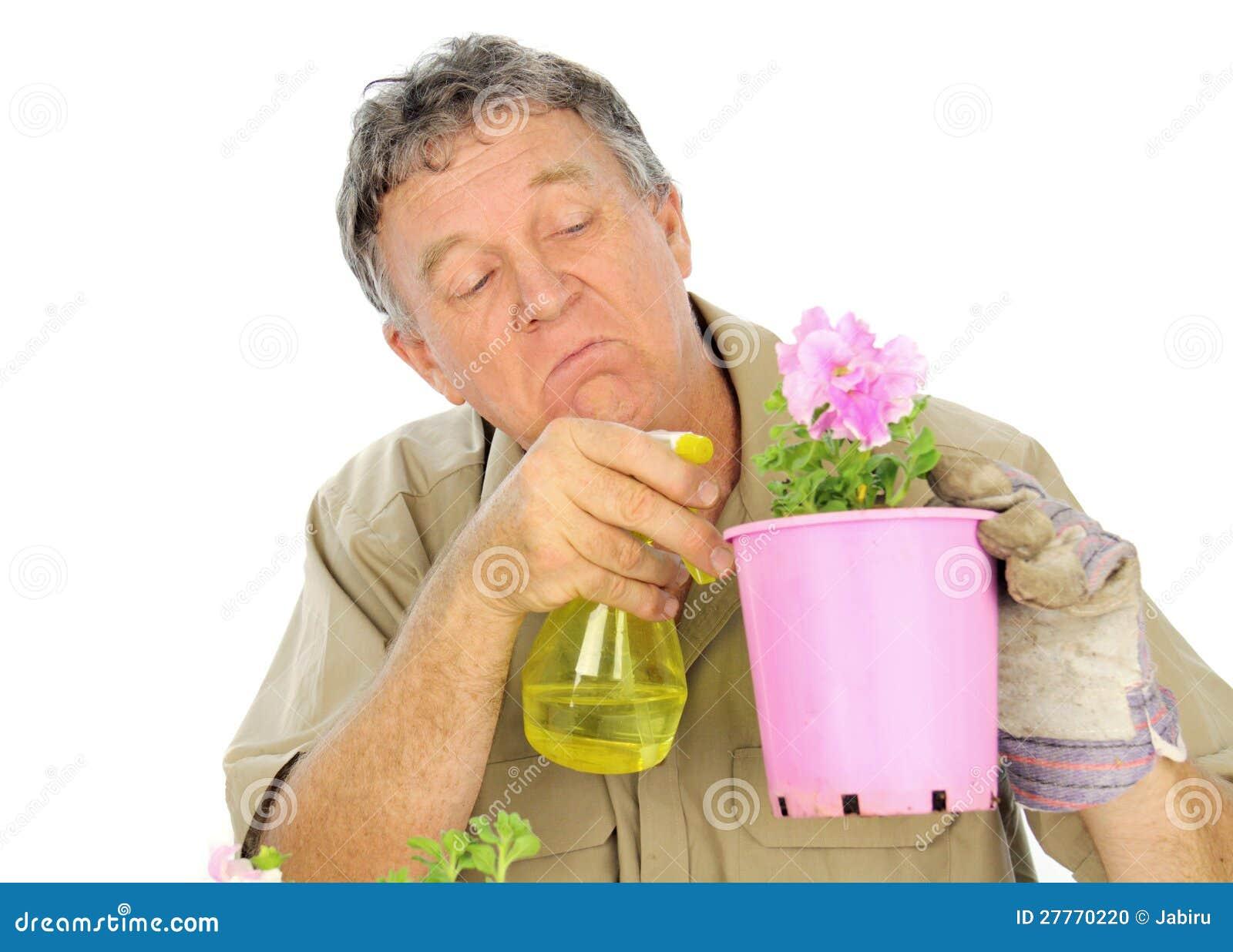 Le pépiniériste pulvérise des plantes