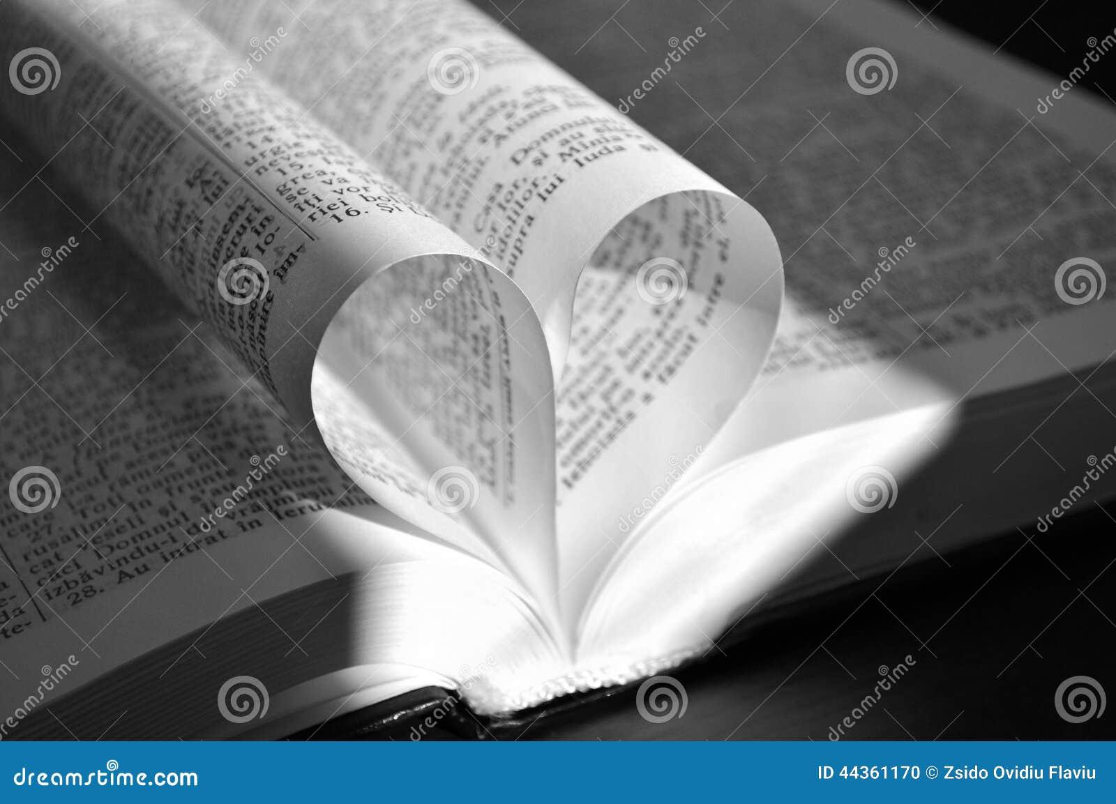Le pagine del primo piano di un libro aperto, con cuore hanno modellato le pagine