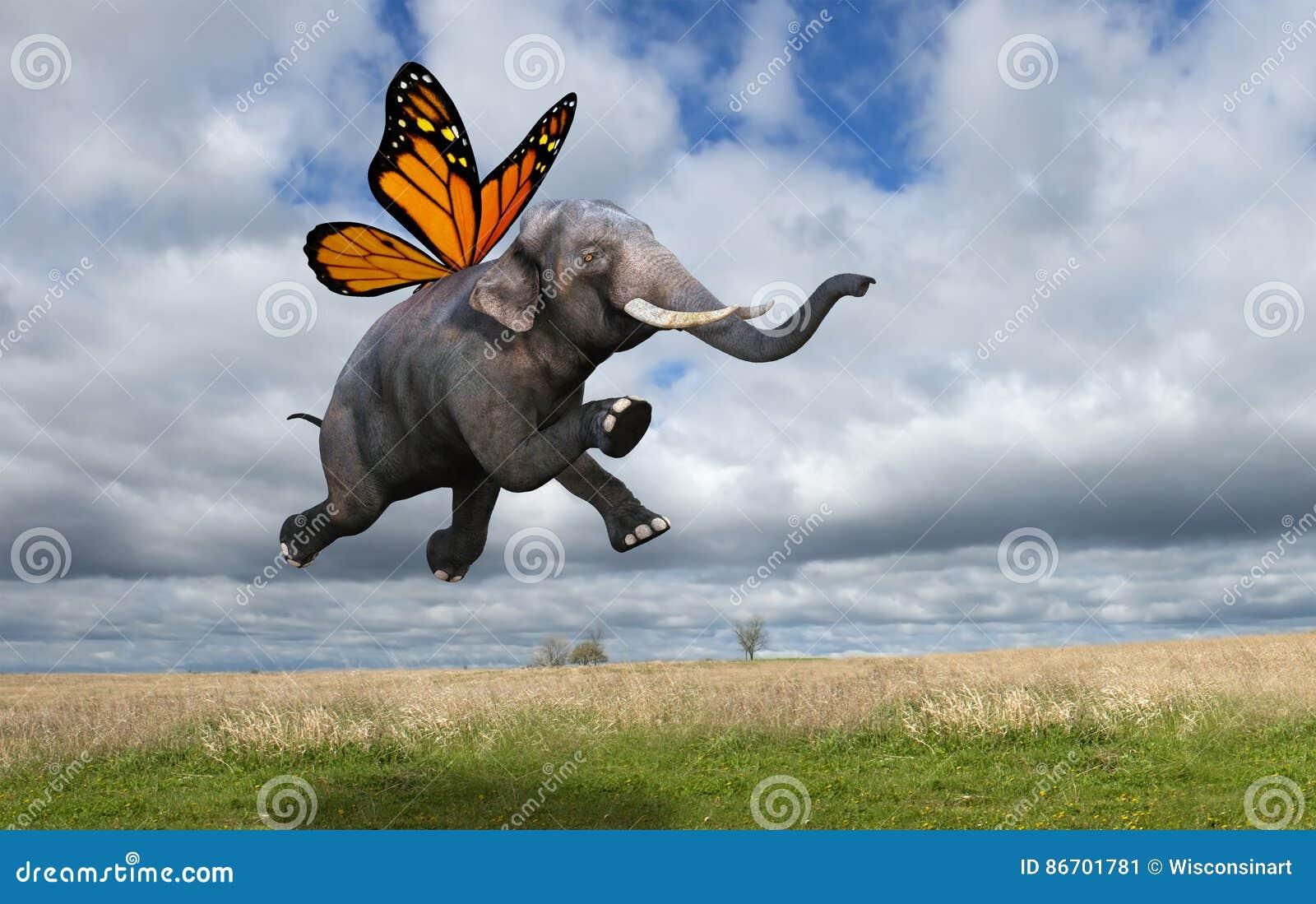 le papillon de monarque surr aliste s 39 envole l 39 l phant. Black Bedroom Furniture Sets. Home Design Ideas