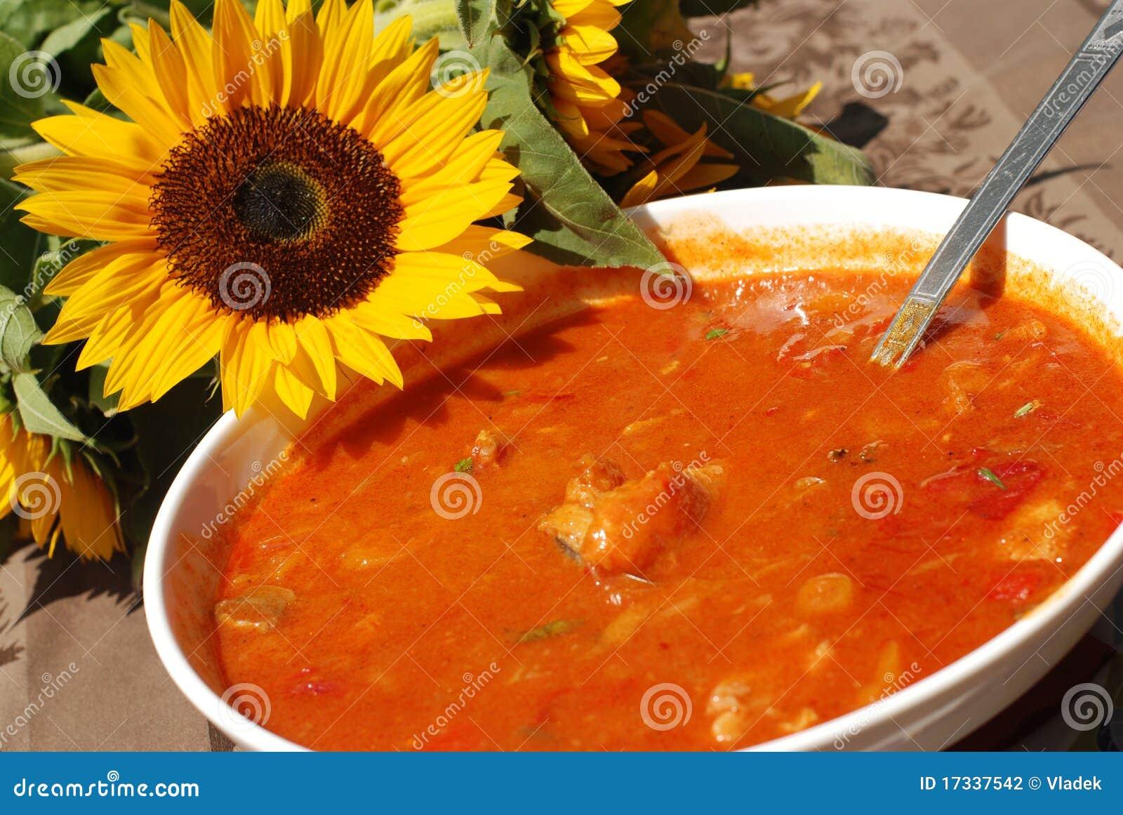 Le paprika chaud a basé le ragoût de poissons