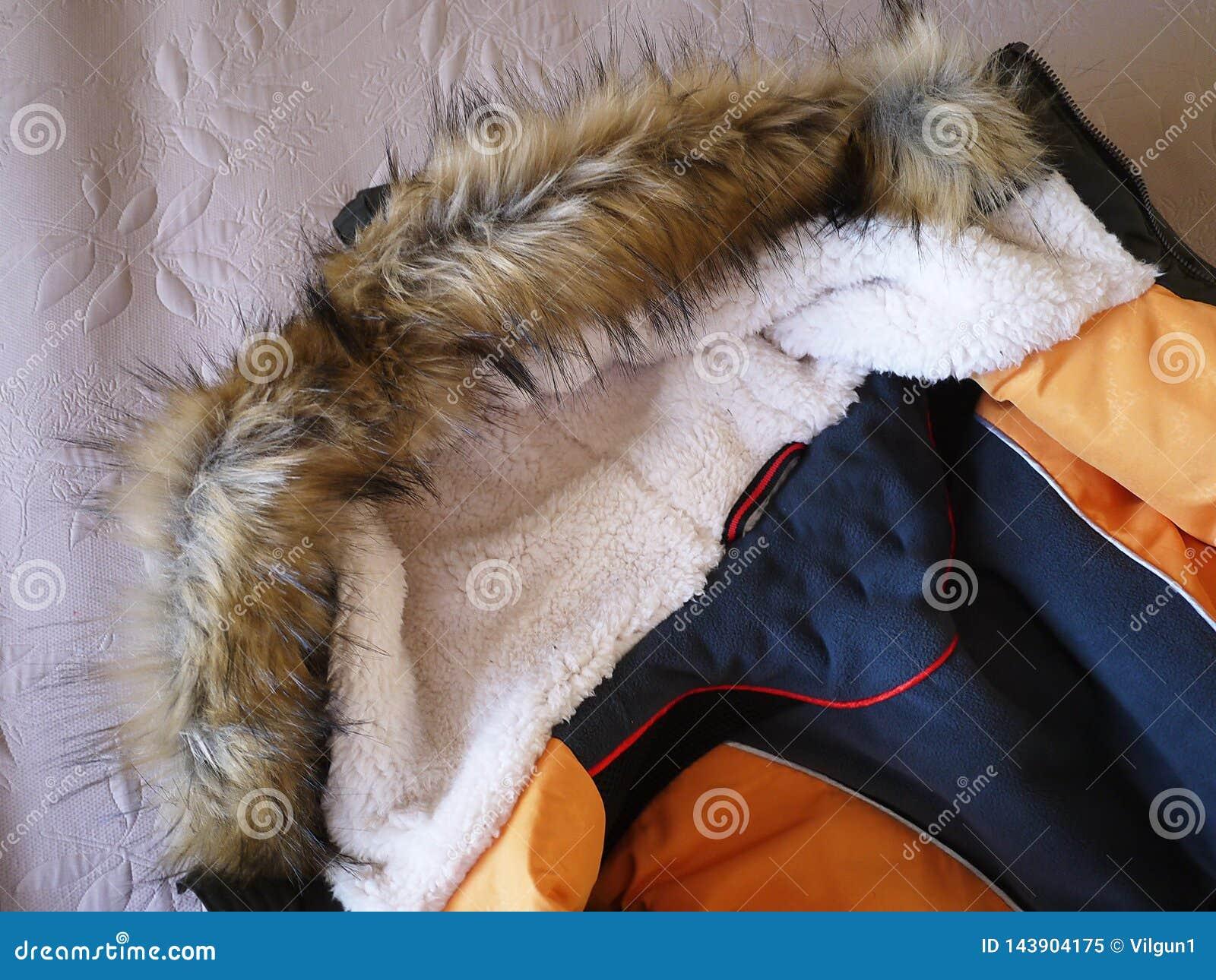 Le parc des hommes d hiver Détails, plan rapproché, temps d hiver et veste chaude