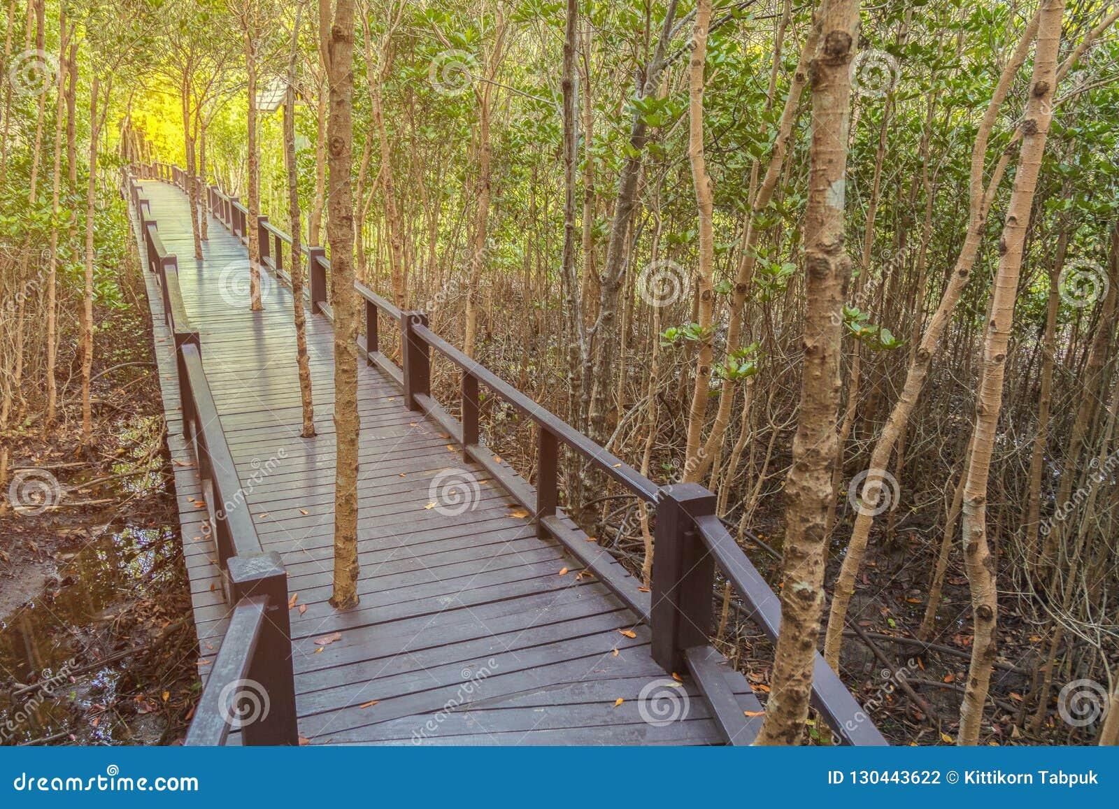 Le passage couvert au bois