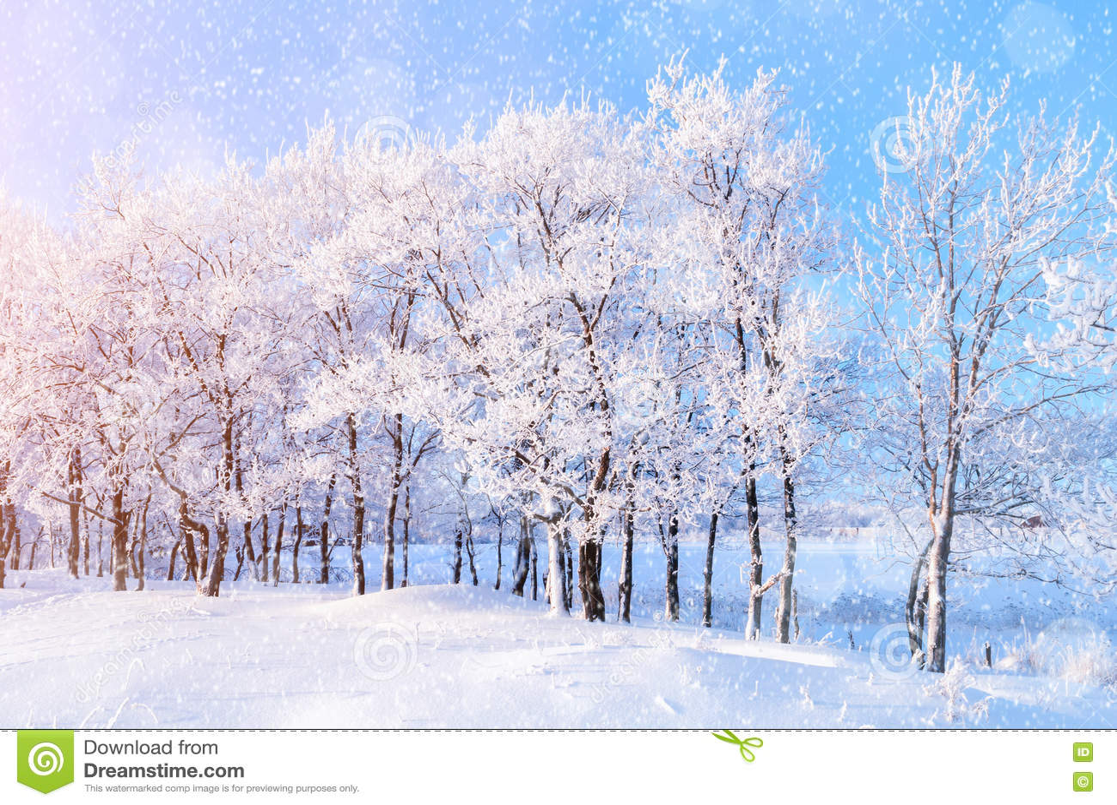 Le paysage d 39 hiver avec le pays des merveilles en baisse d for Le paysage